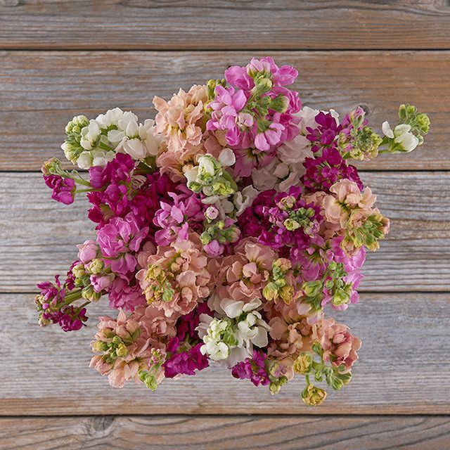 Flower Bouquet from The Bouqs