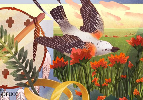 Illustrated image indicative of Oklahoma, featuring the state bird, Indigenous American detail, state flowers, and an outline of the state.