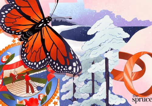 In illustrated image indicative of Minnesota, featuring a monarch butterfly, the Minnesota state seal, trees, lakes, and the state outline.