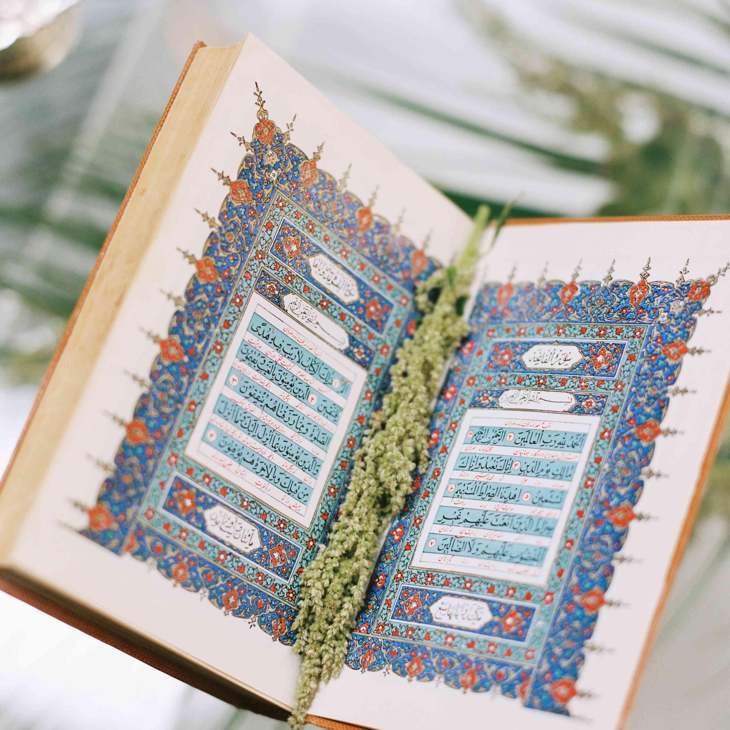 bible religious book