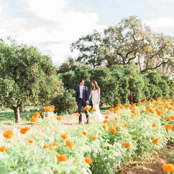 Bride and Groom in Field of Flowers