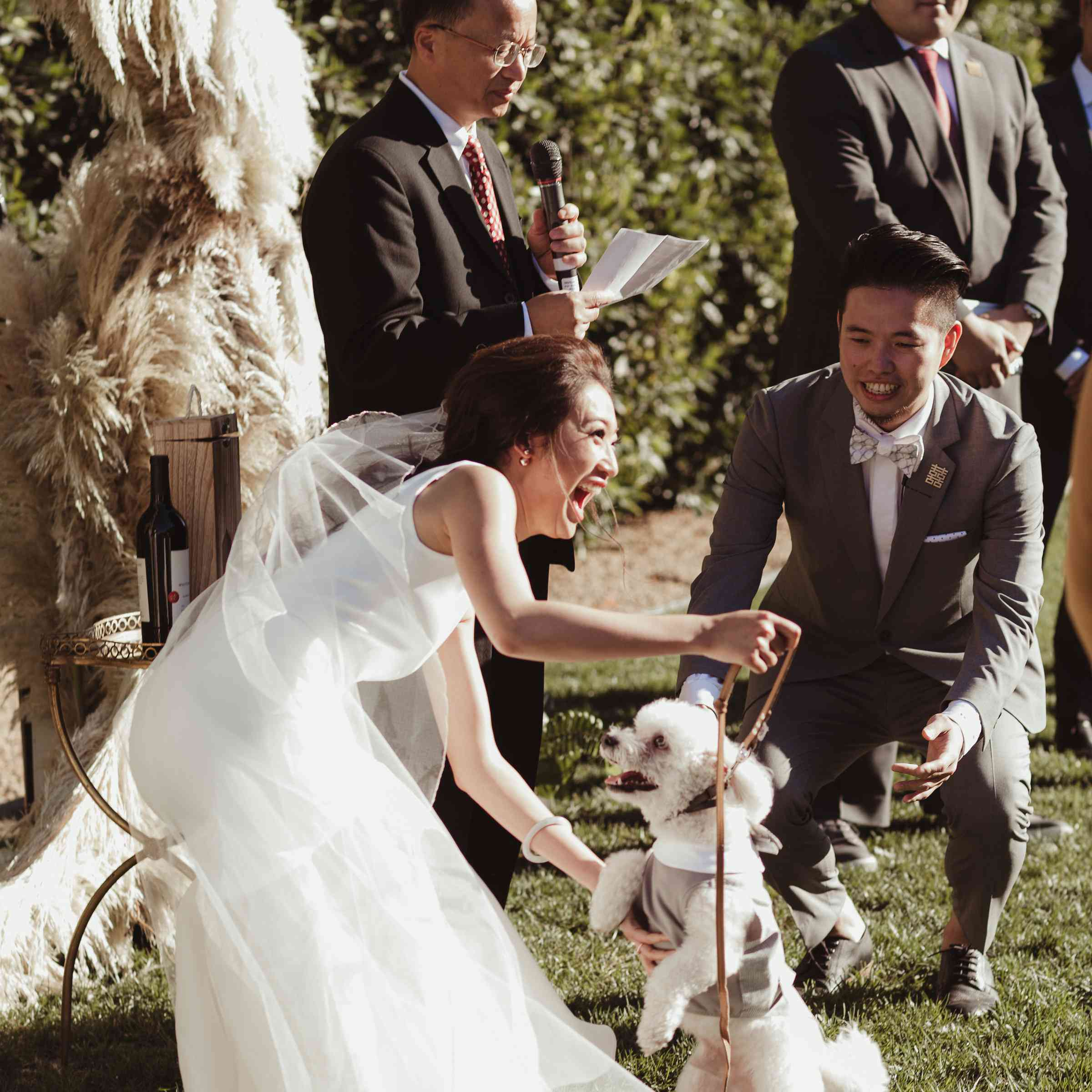 Bride laughing with dog