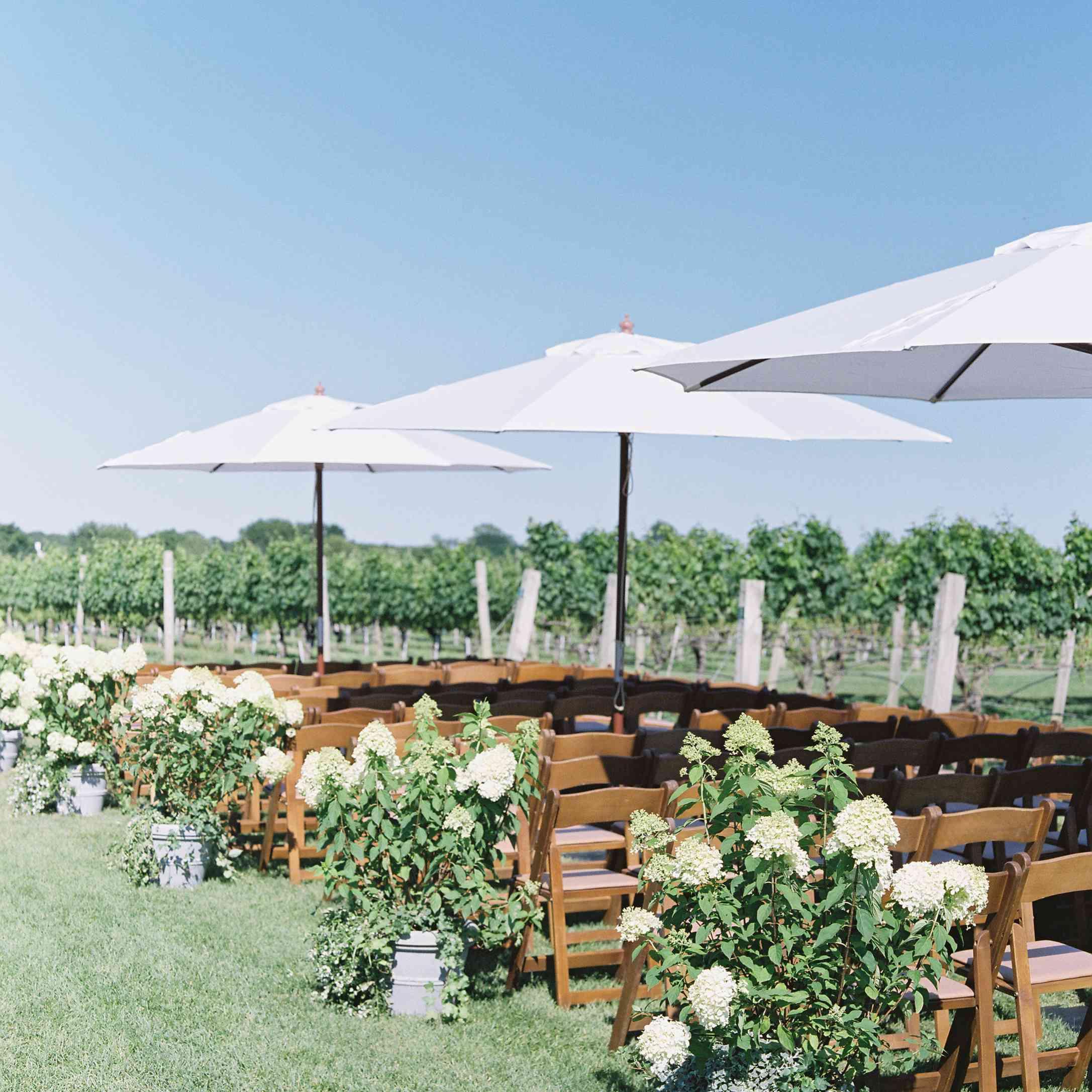 vineyard ceremony seating