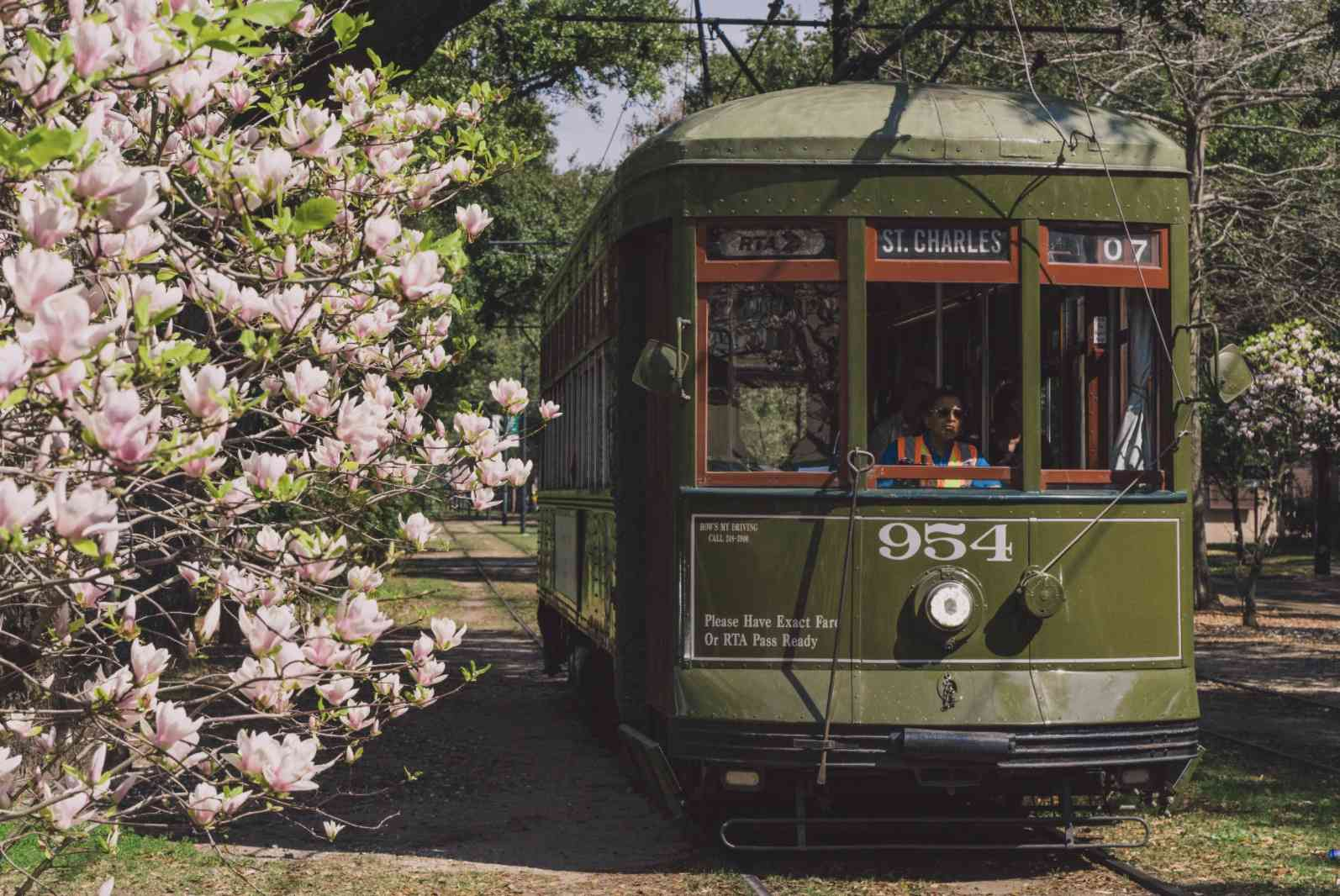 Green streetcar on Saint Charles Avenue in New Orleans