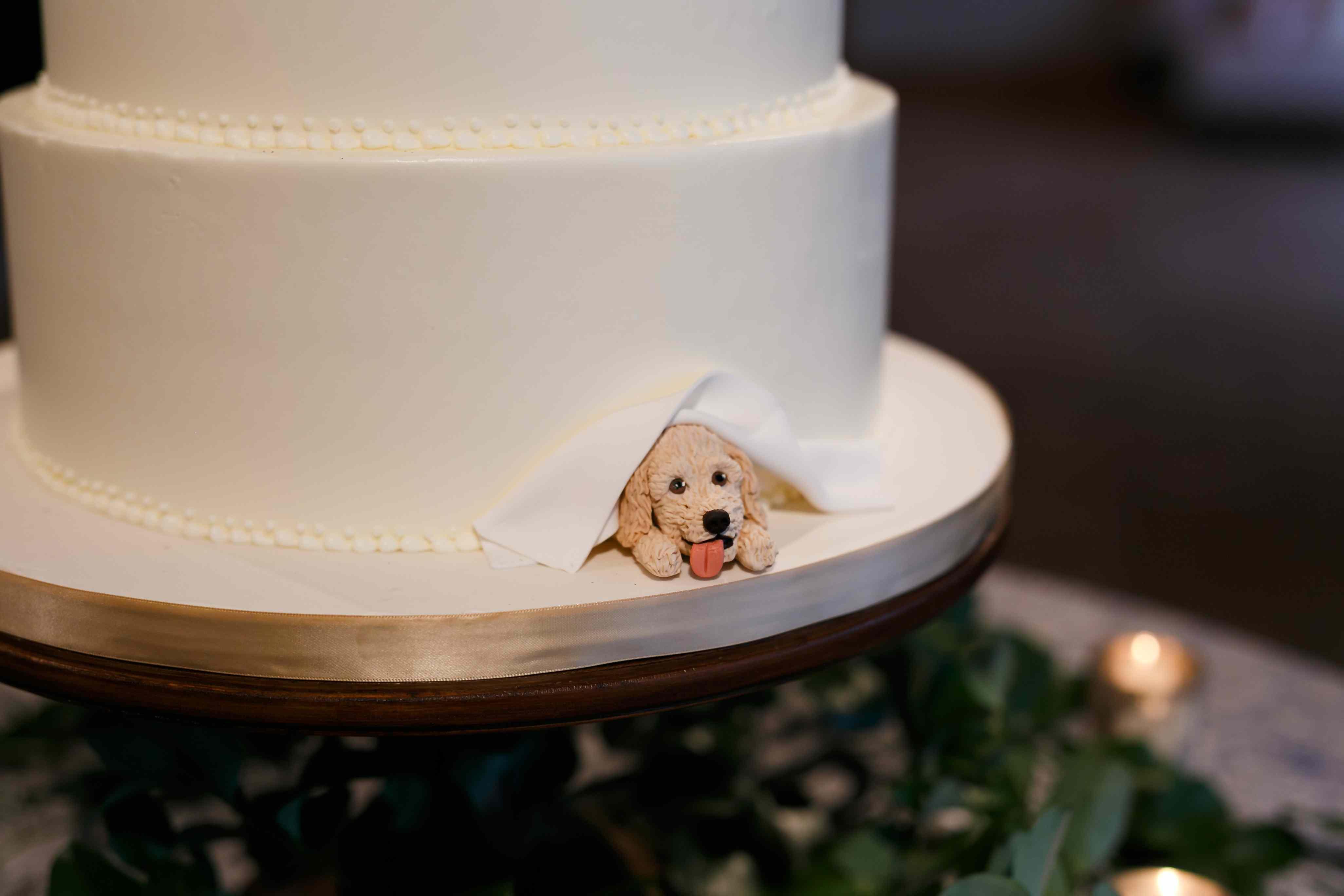 Sugar puppy peeking out of bottom of cake