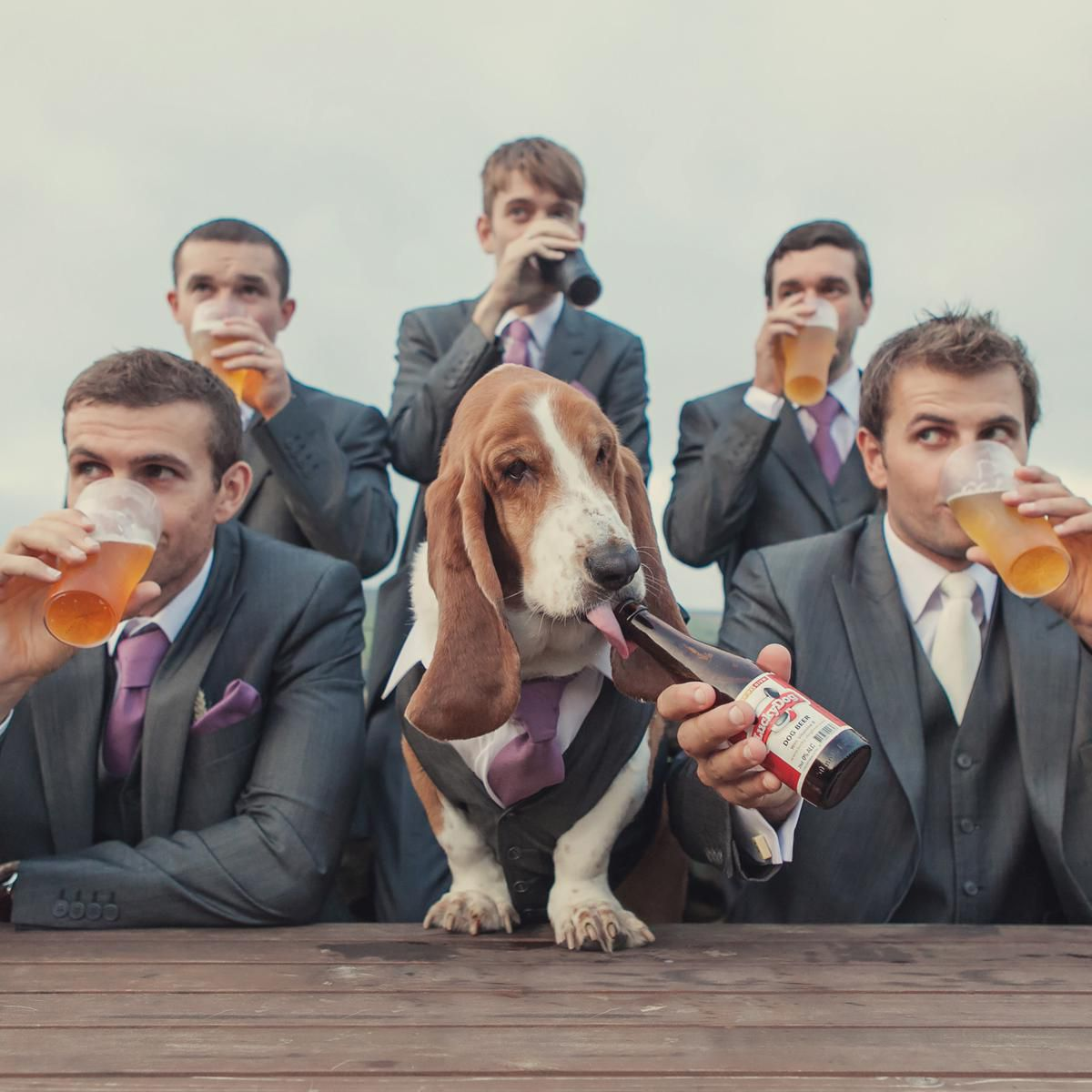 groomsmen drinking beer with beagle