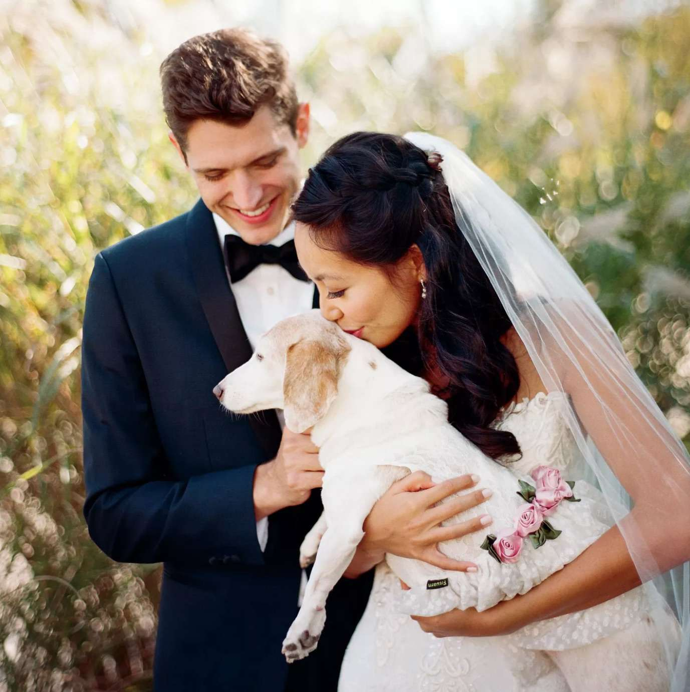 Bride kissing dog in wedding dress