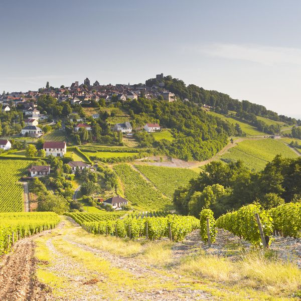 The Most Romantic Places To Throw A French Vineyard Wedding