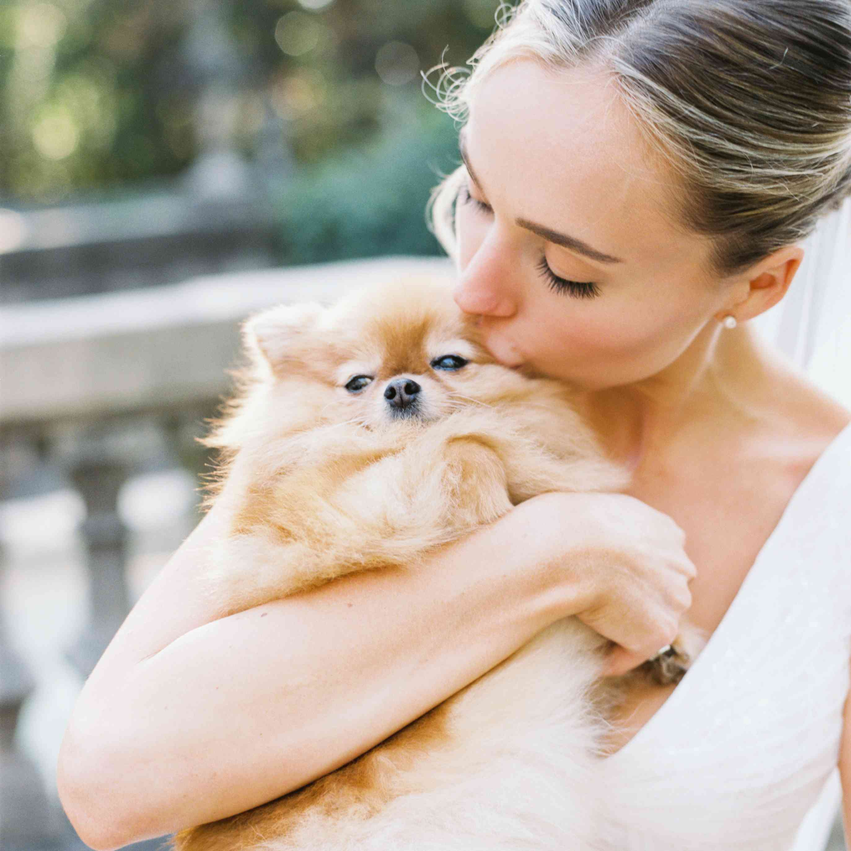 <p>bride and dog</p><br><br>