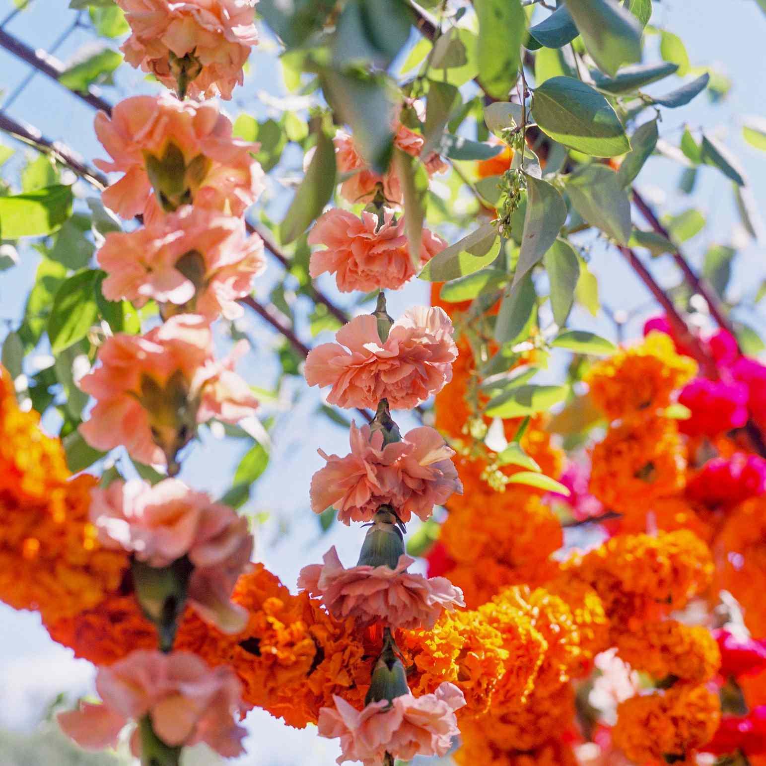 floral arch