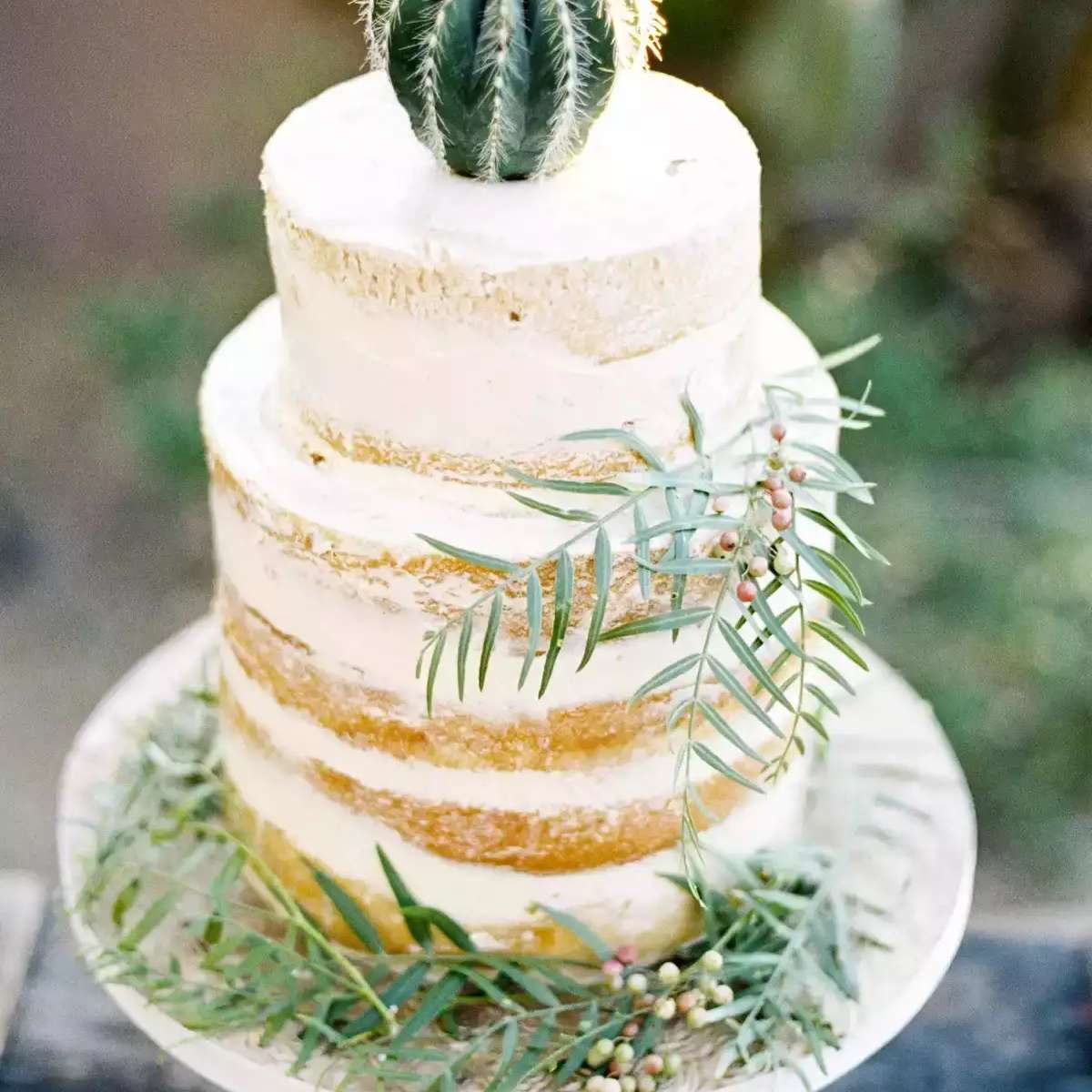 Naked cake with cactus topper