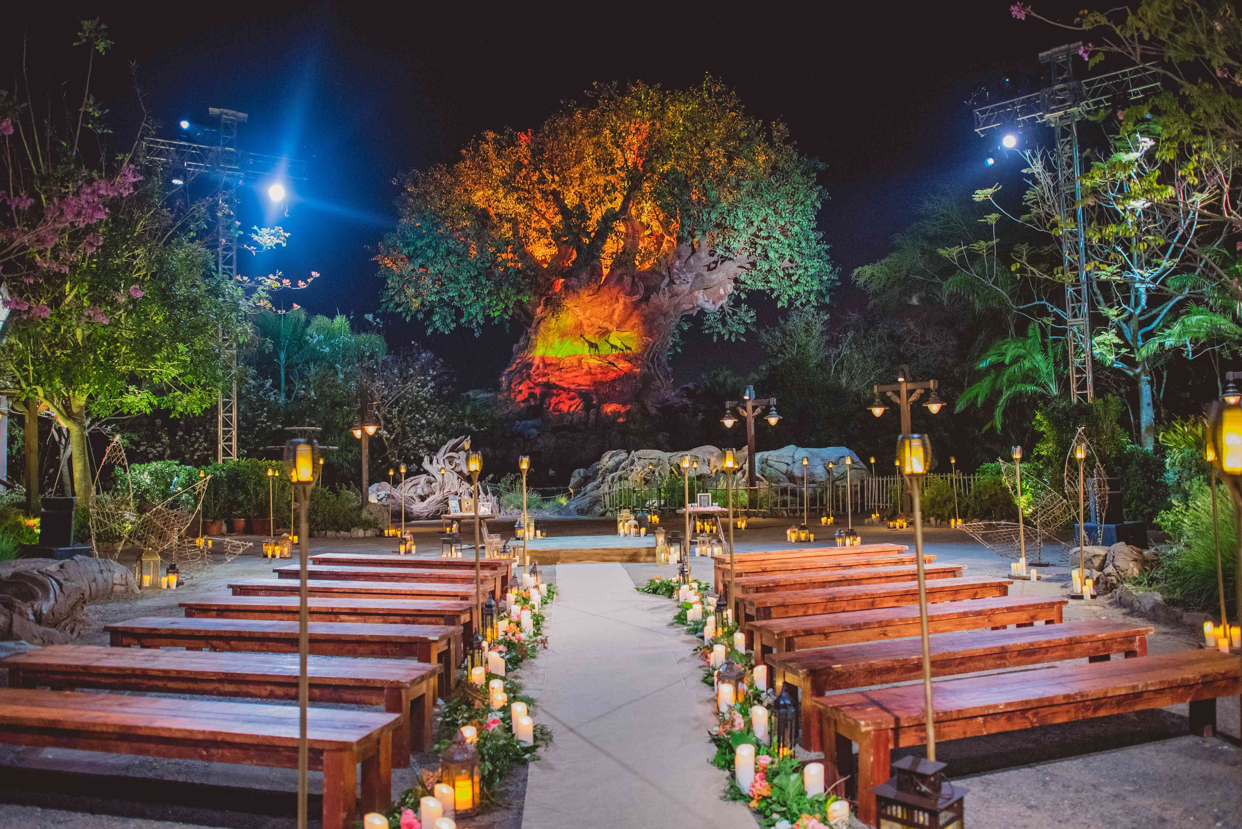 Benches set up for a Disney wedding