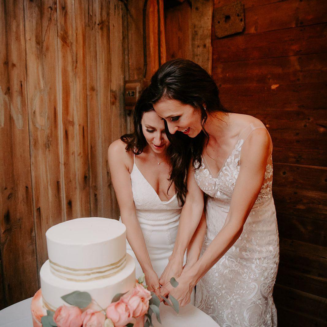 A couple cutting their wedding cake