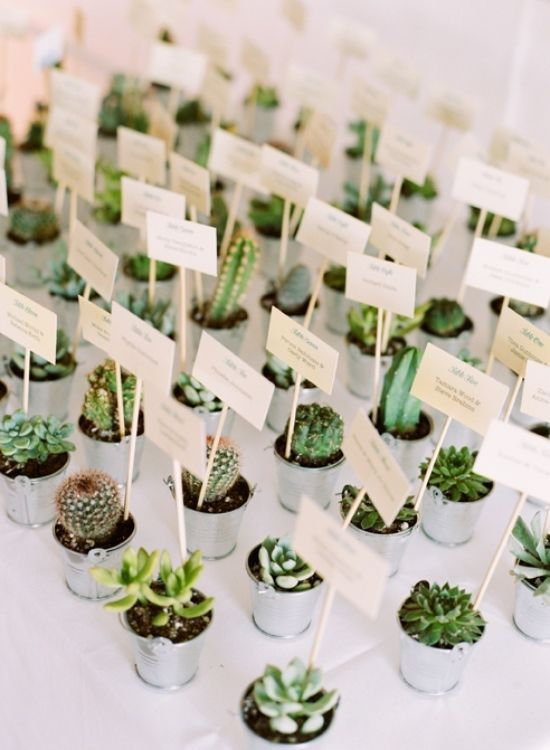 Cacti and Succulent Escort Cards and Wedding Favors