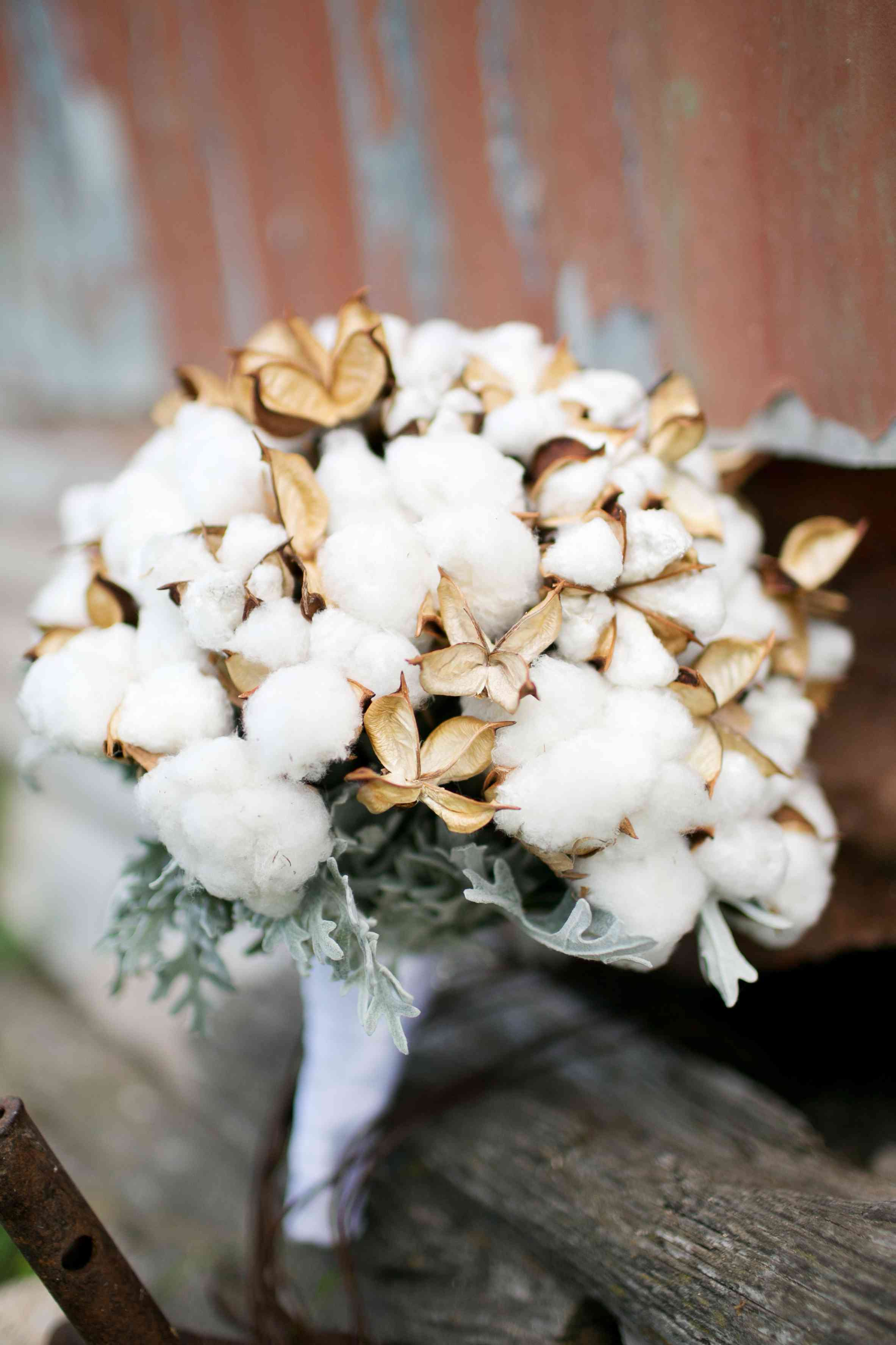 bouquet of cotton and leaves