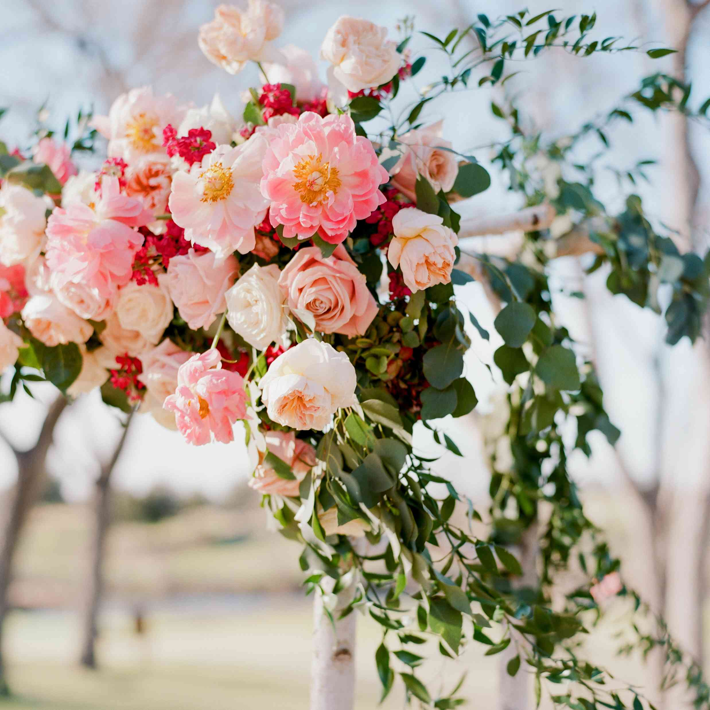 <p>flowers</p><br><br>
