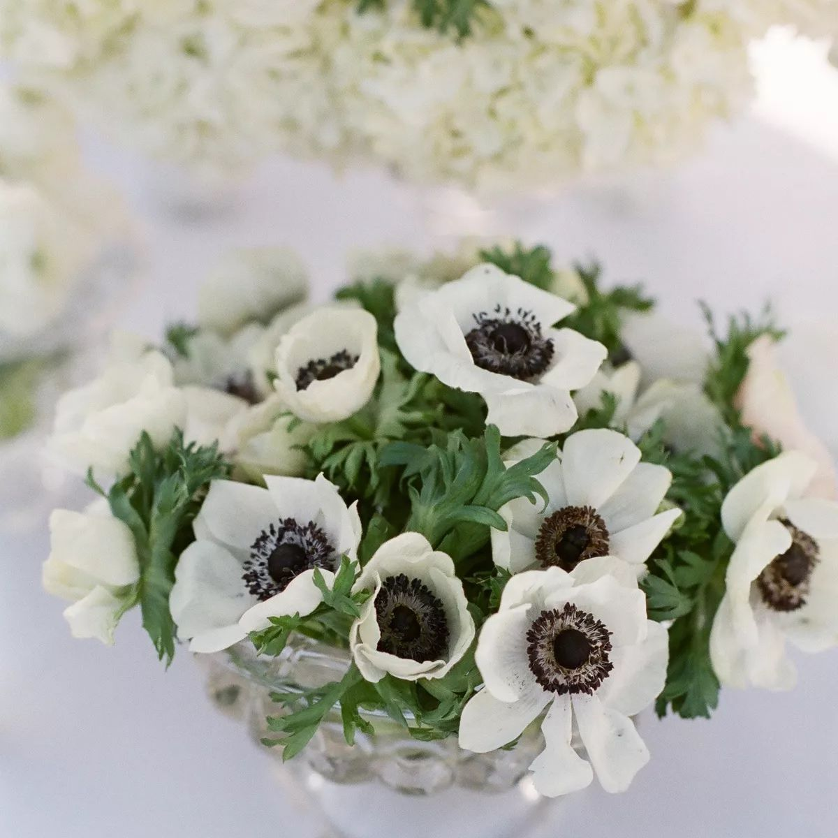 anemone flower centerpiece