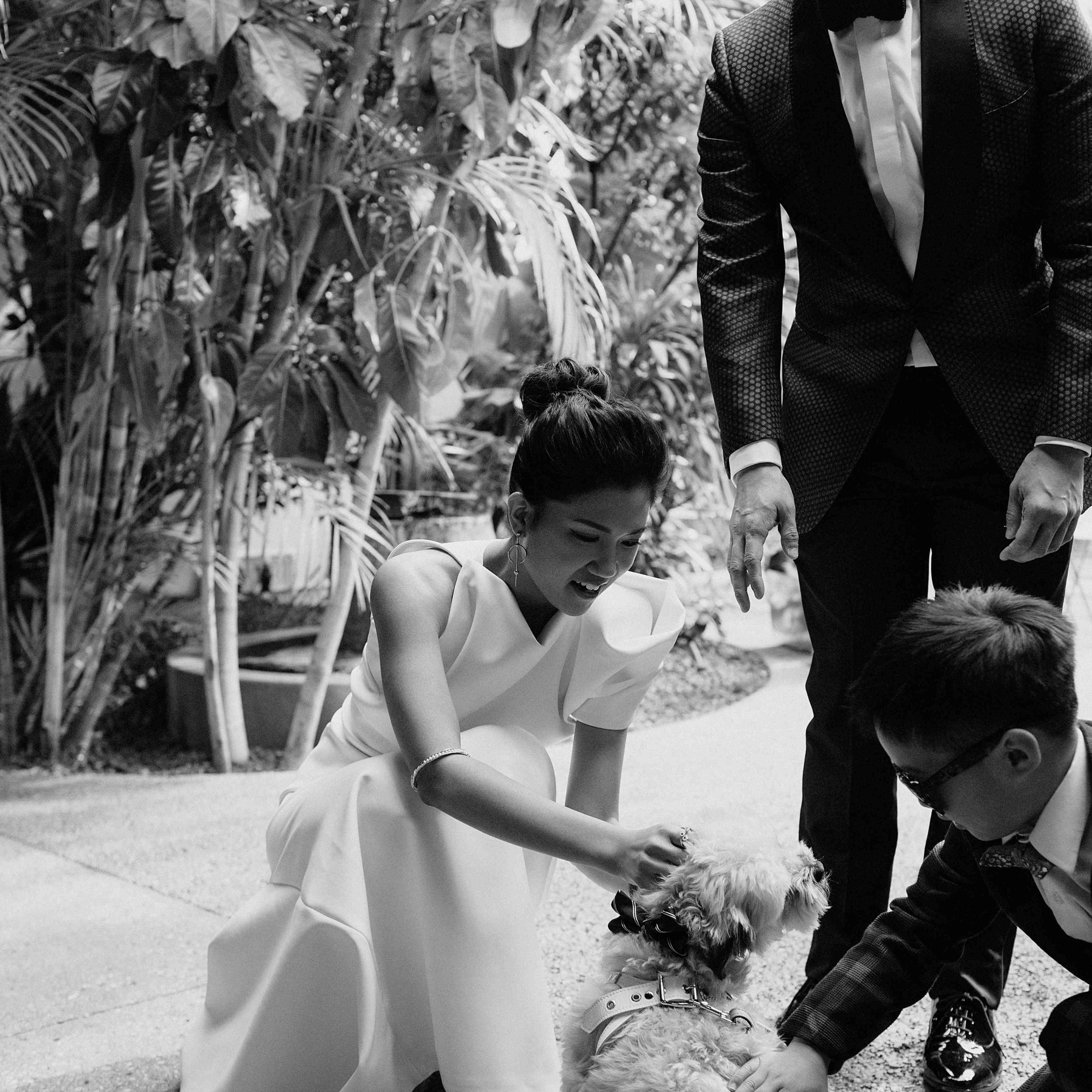 <p>Bride and groom petting dog</p><br><br>