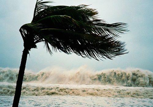 Hurricane Harvey and Hurricane Irma