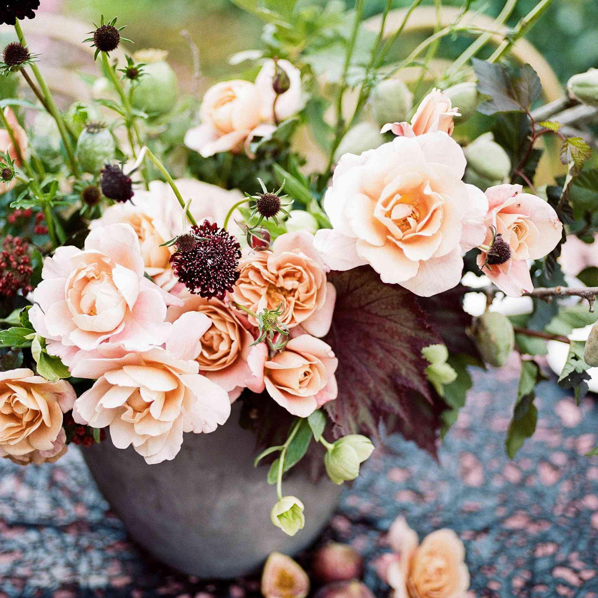 Apricot florals