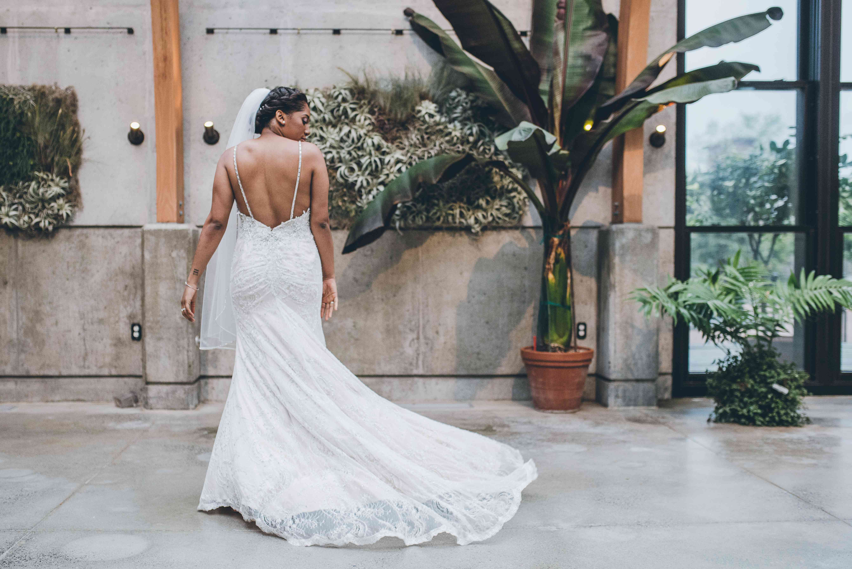 Shot of Bride from back, backless dress