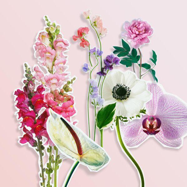 Wedding Flowers In May: 10 Lush Summer Wedding Flower Ideas