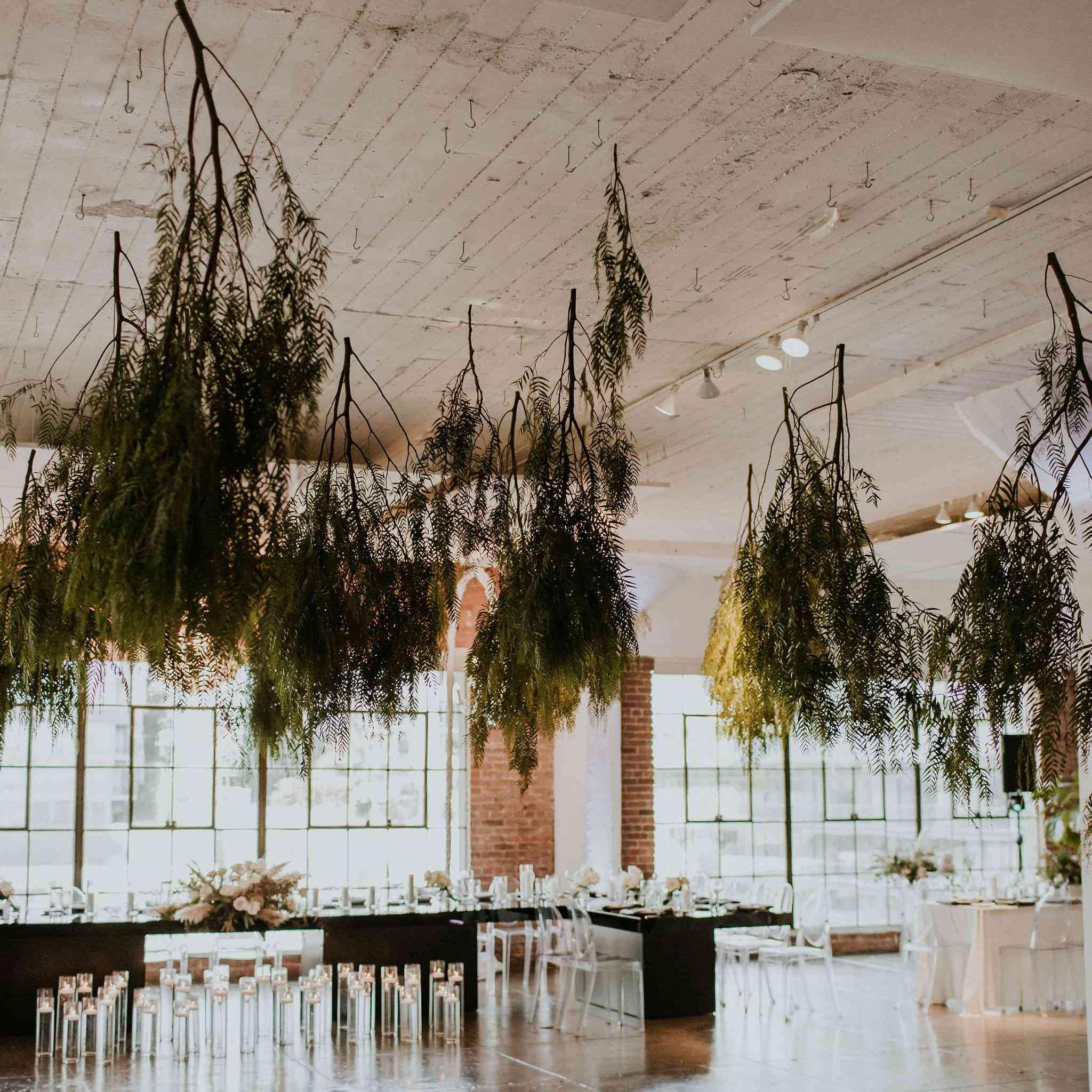 dance floor with hanging plants