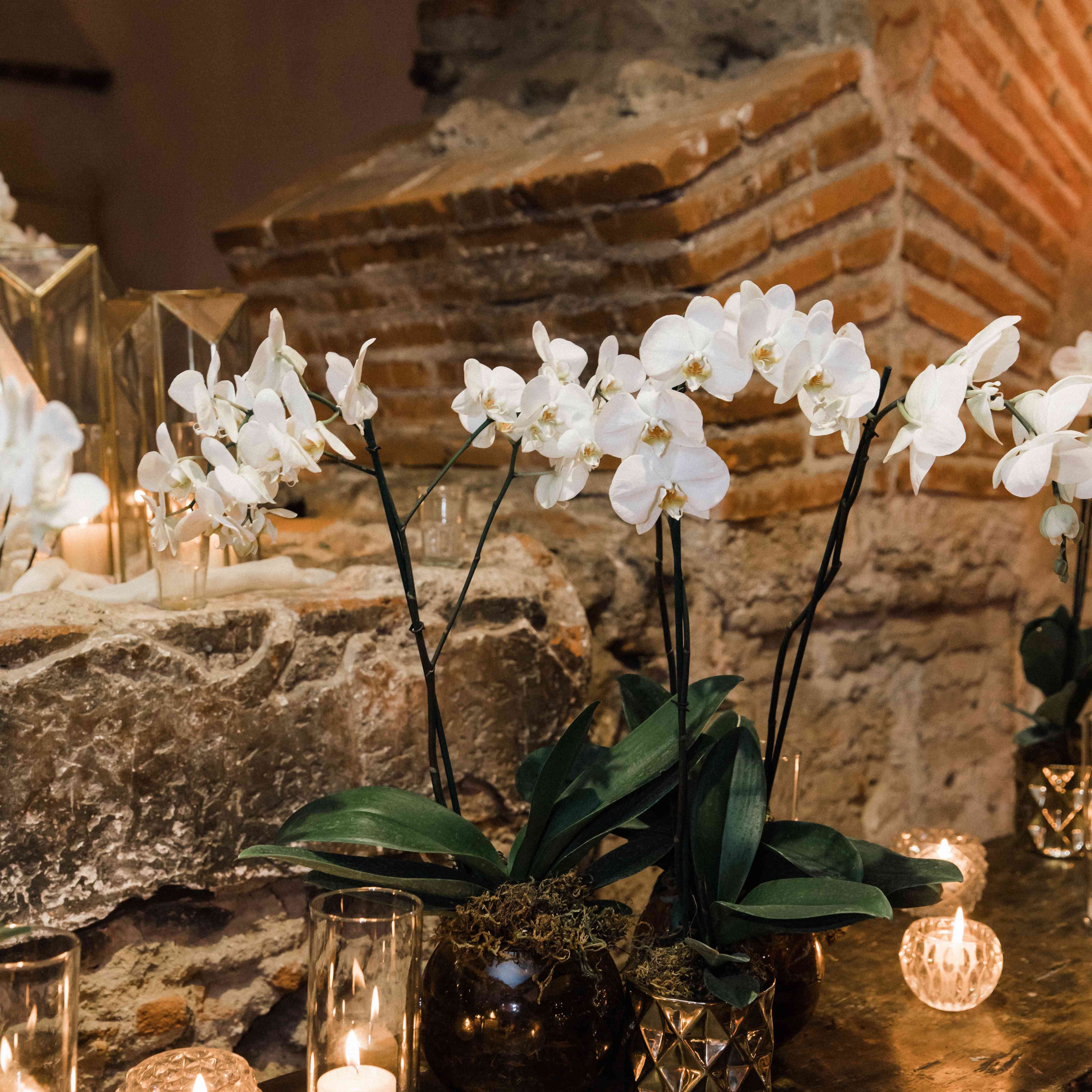 <p>candles and white orchids</p><br><br>