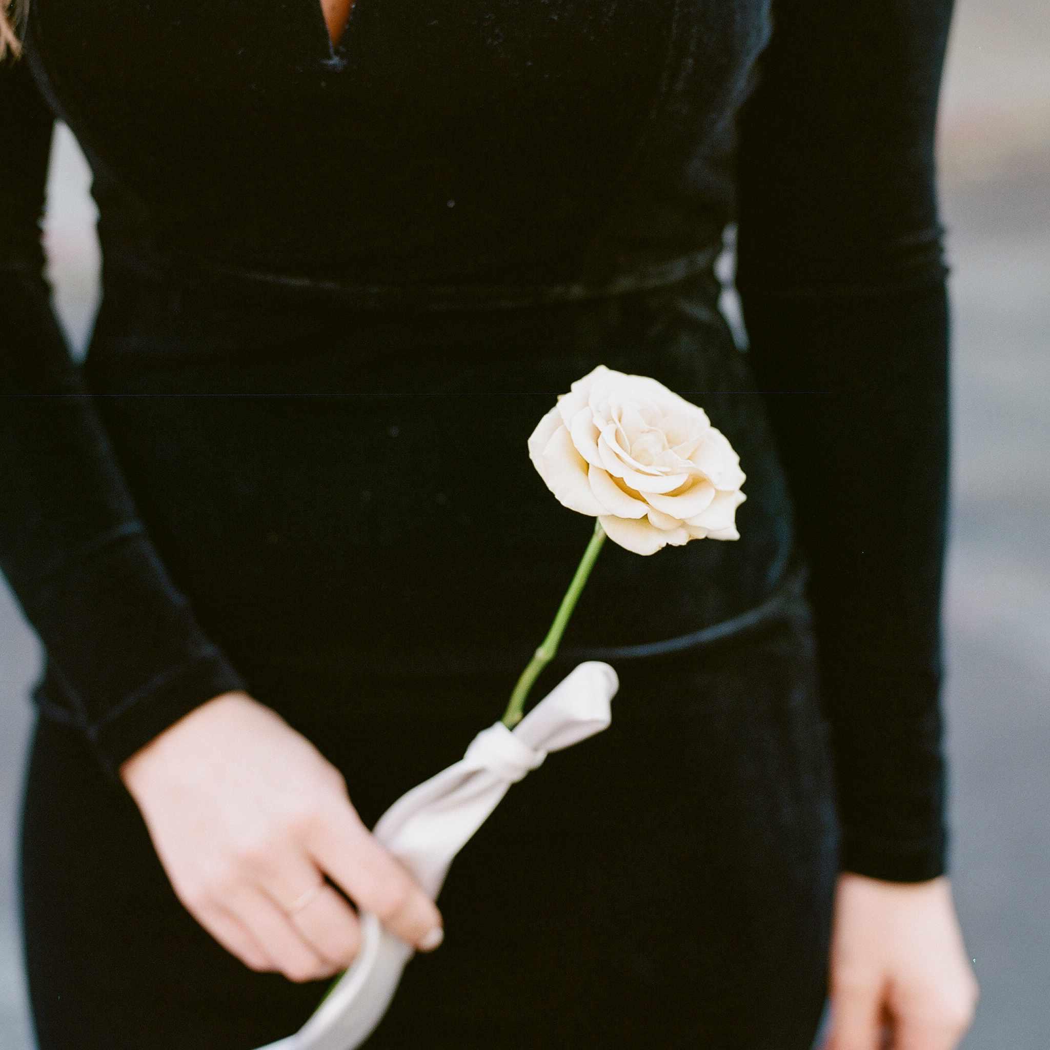 Bride in velvet holding a single rose stem