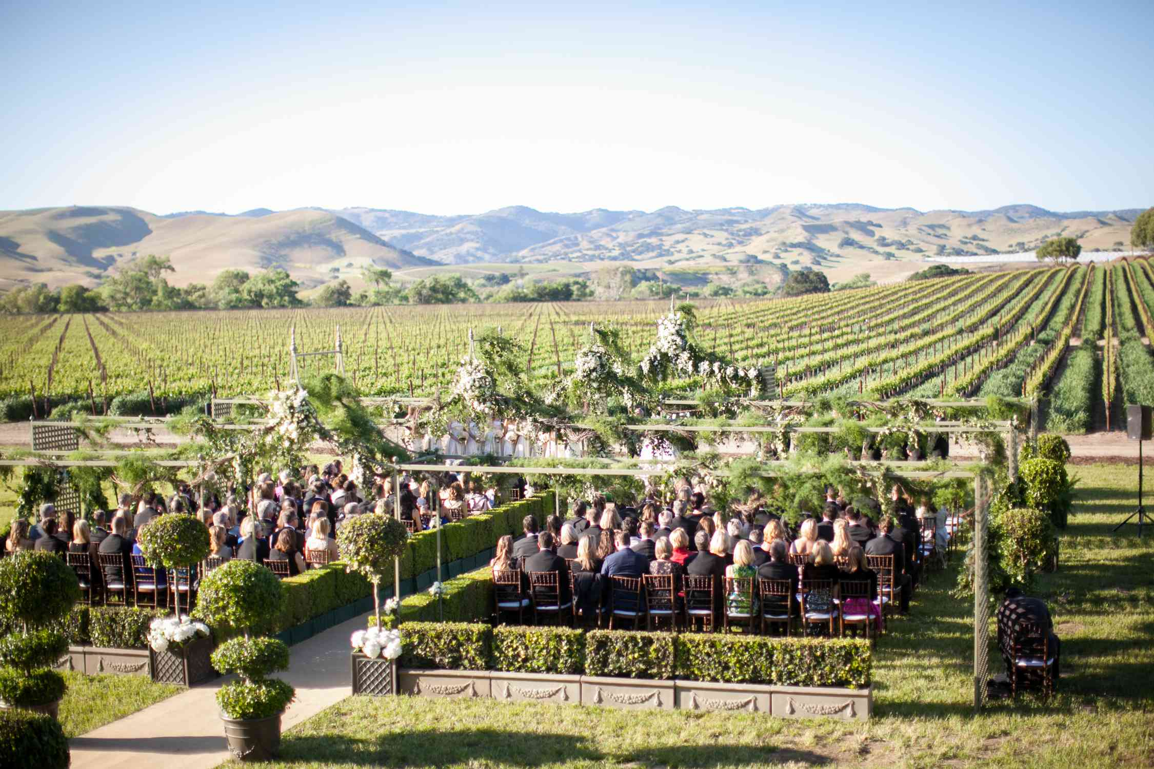 Wedding ceremony with vineyard in the background