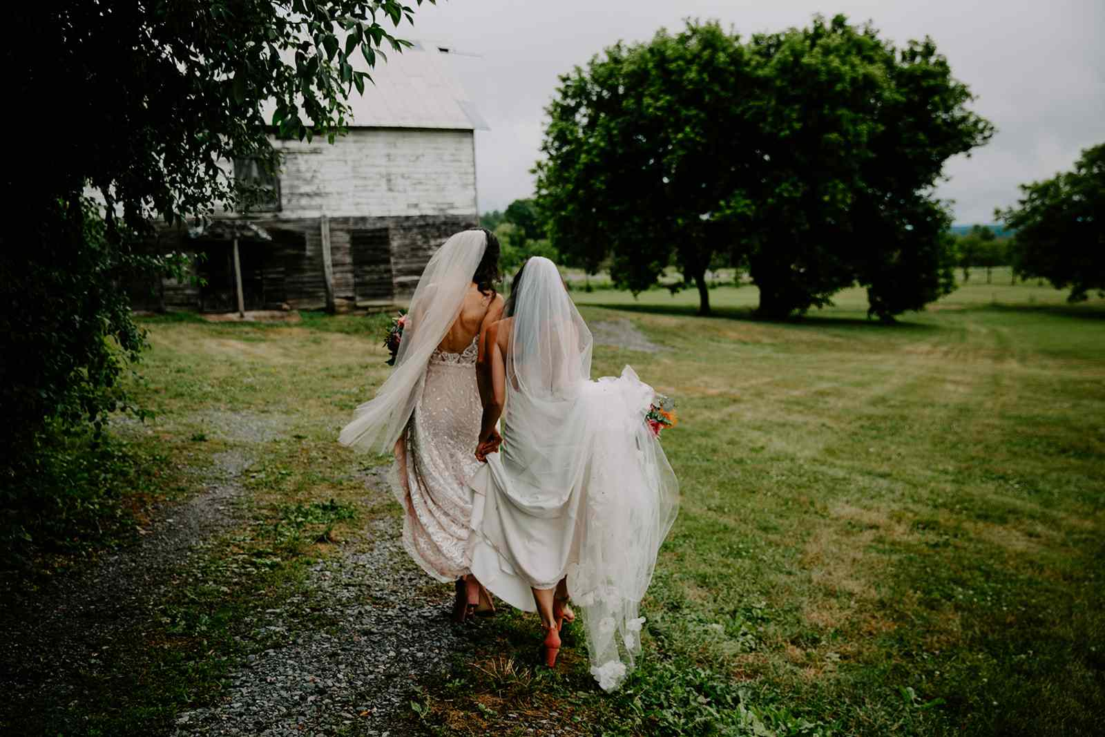 brides walking through farm