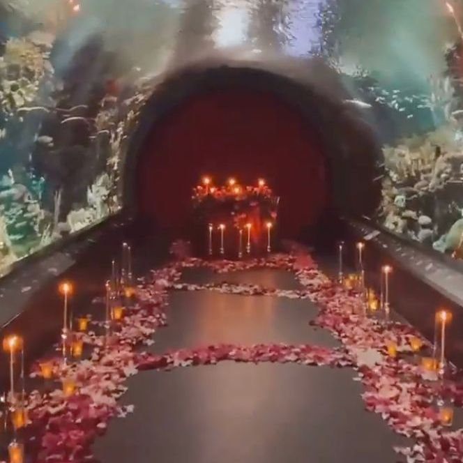 An aquarium tunnel covered in candles and rose petals.