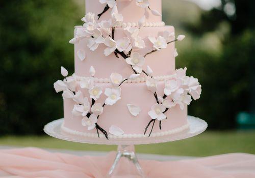 pink cherry blossom cake