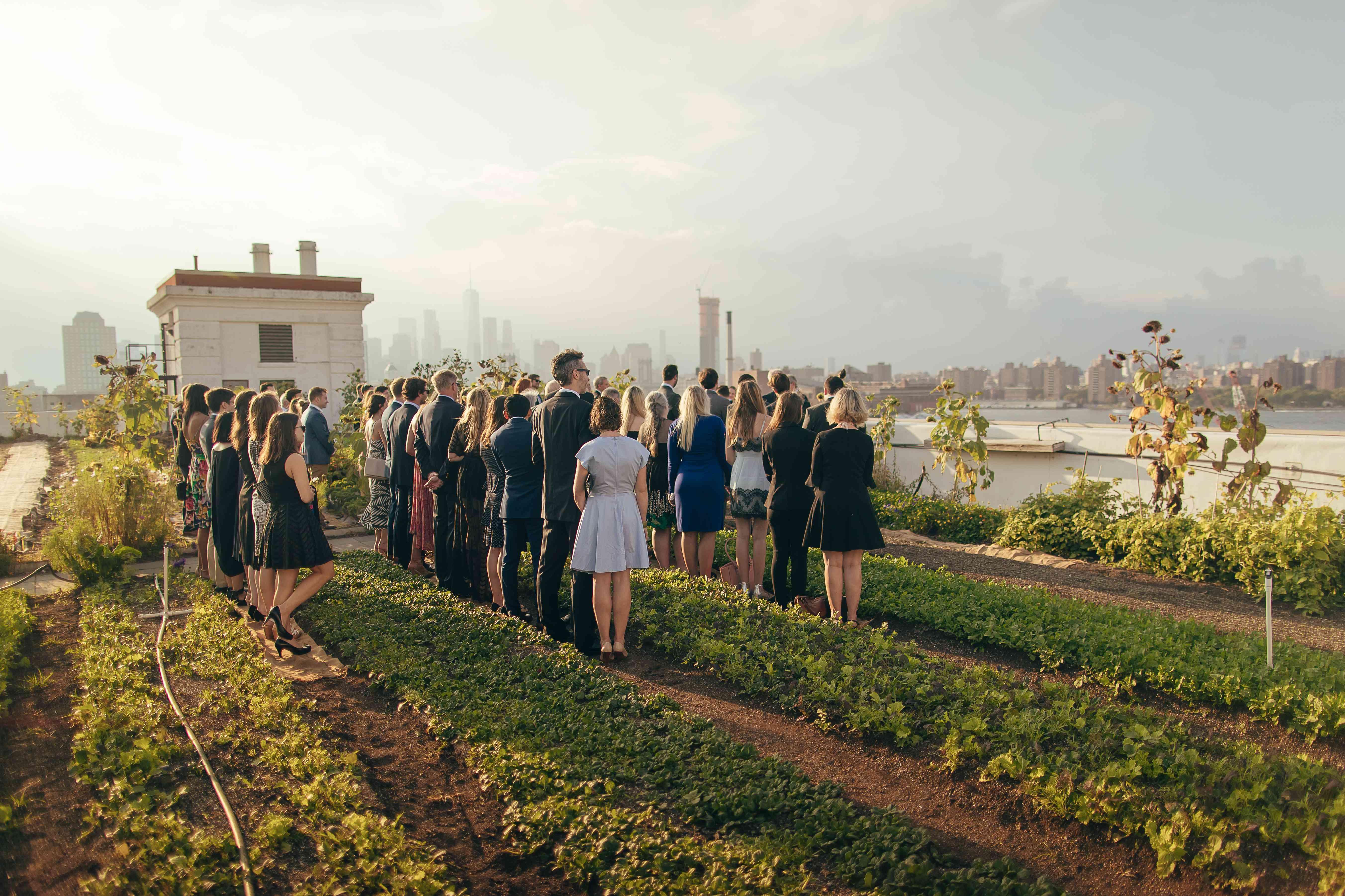 Wedding guests on Brooklyn rooftop