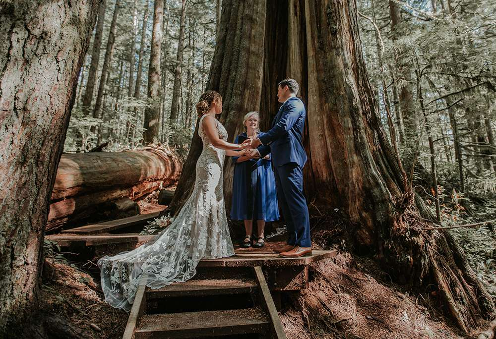 Vancouver Island Avatar Grove elopement