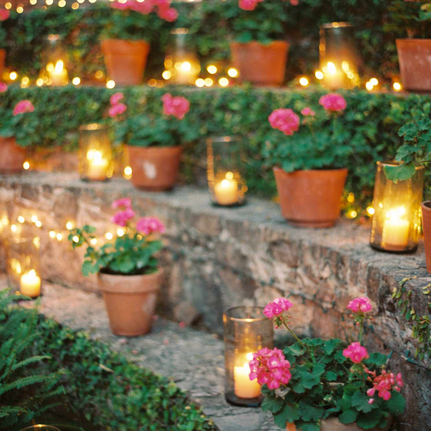 Potted plants and candles
