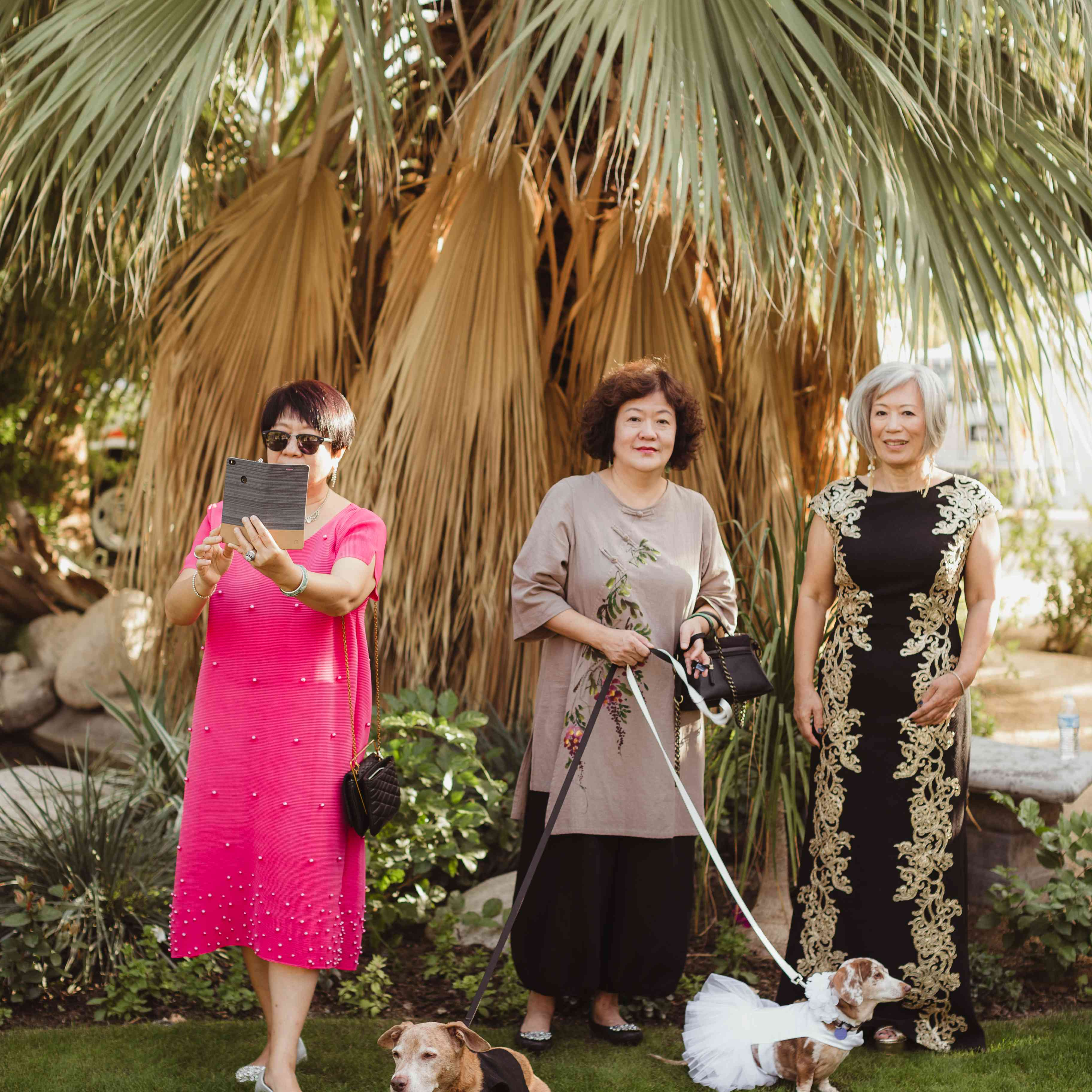 Mother of bride and groom with wedding dogs