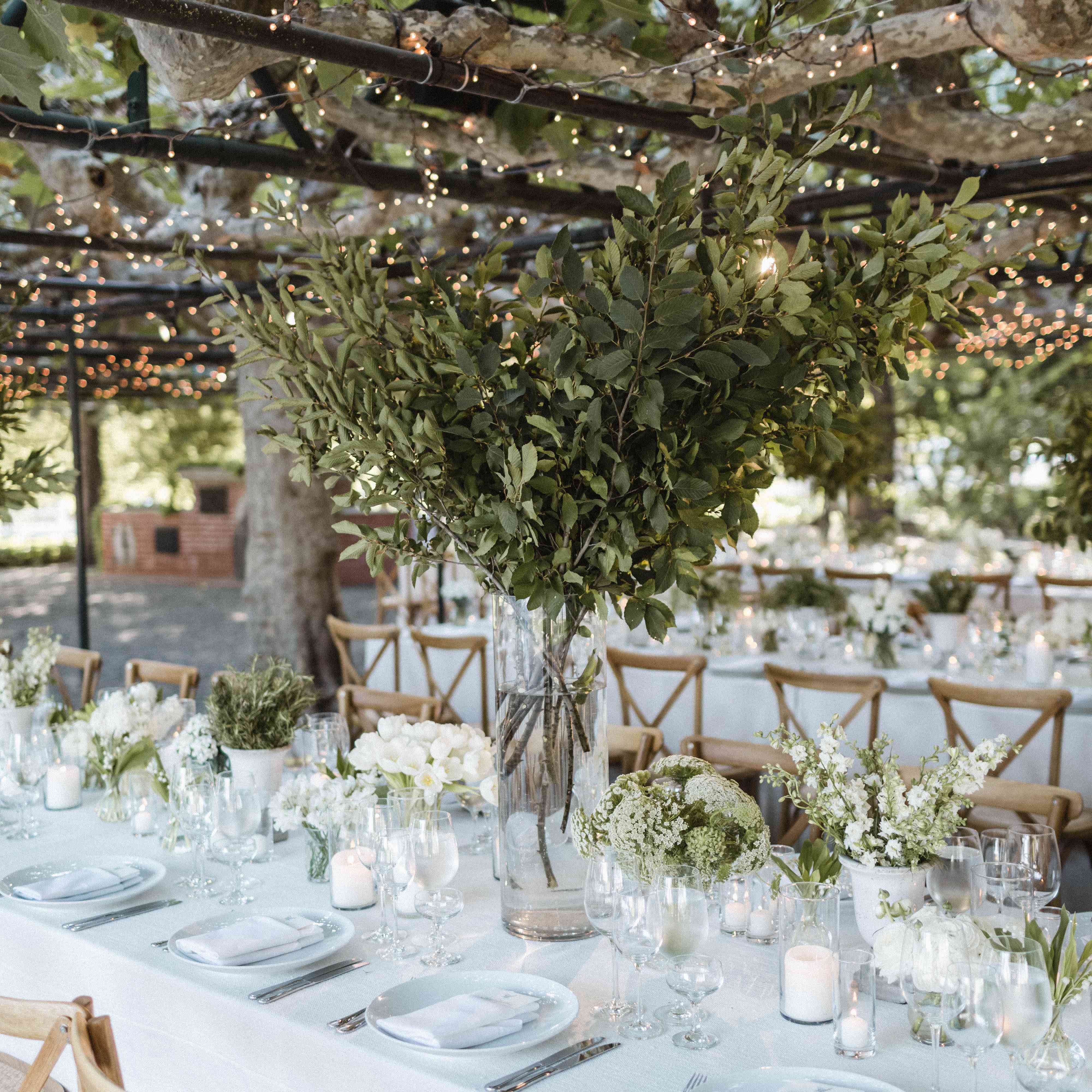 reception under an arbor with string lights
