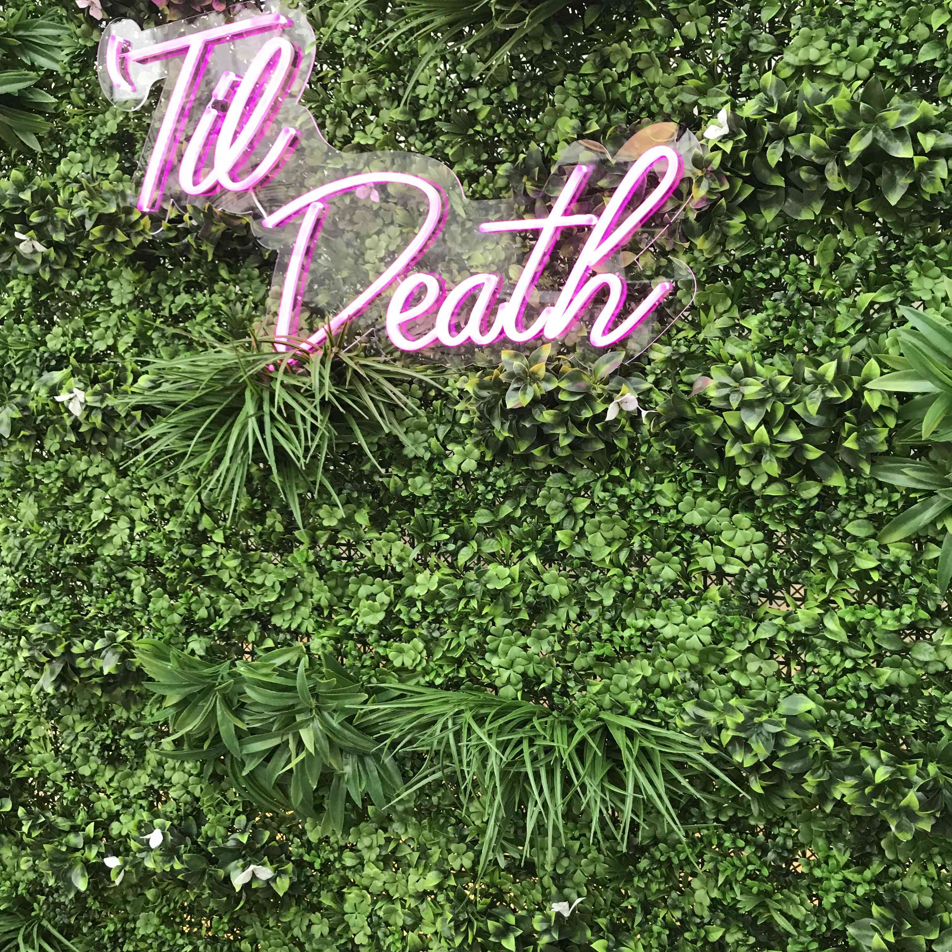 Pink neon sign on living greenery wall
