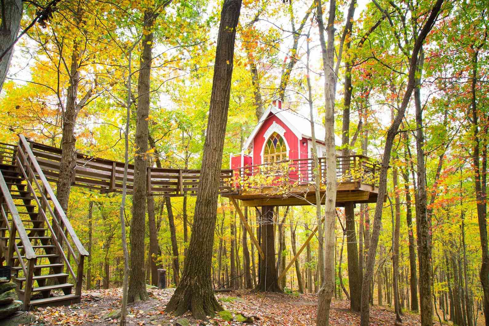 Mohicans Treehouse Resort