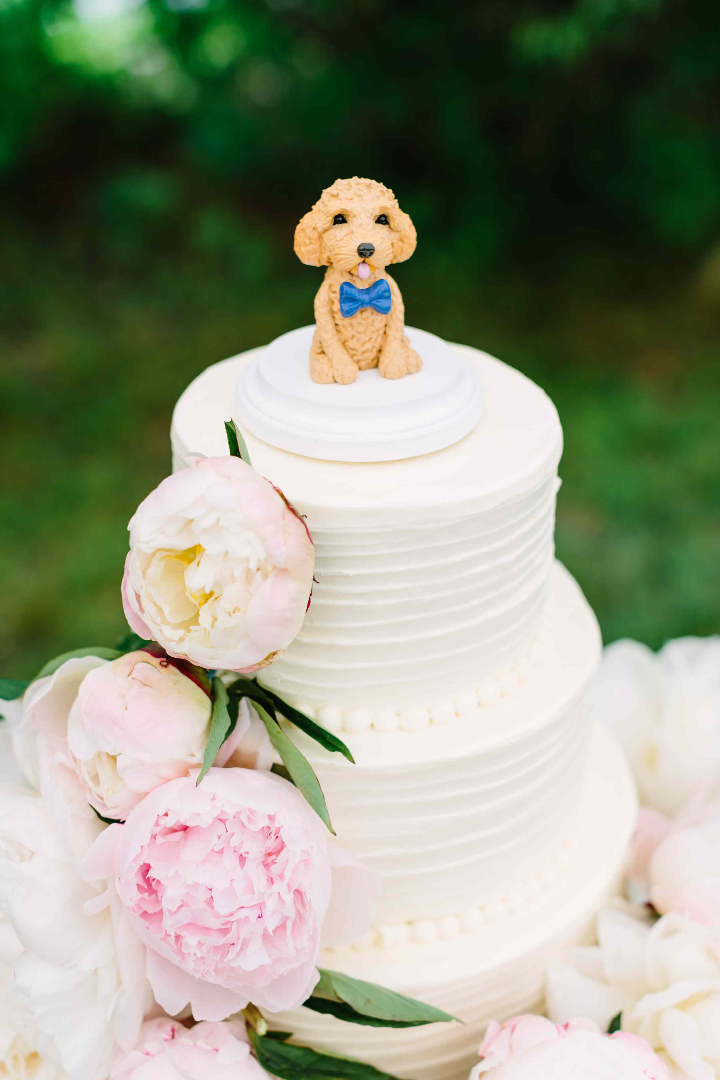 Wedding Cake with Dog Topper