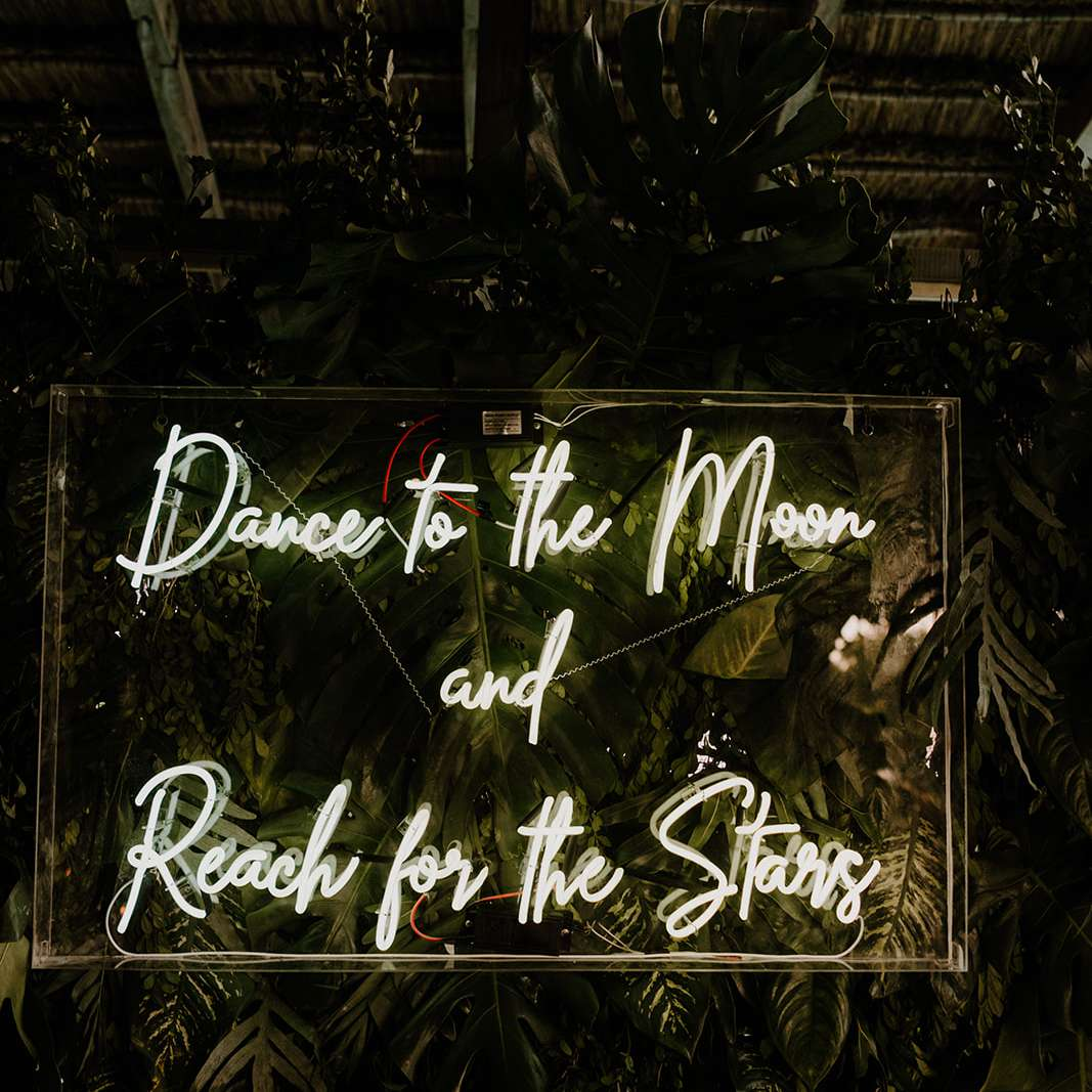 Dance-themed neon sign on palm backdrop