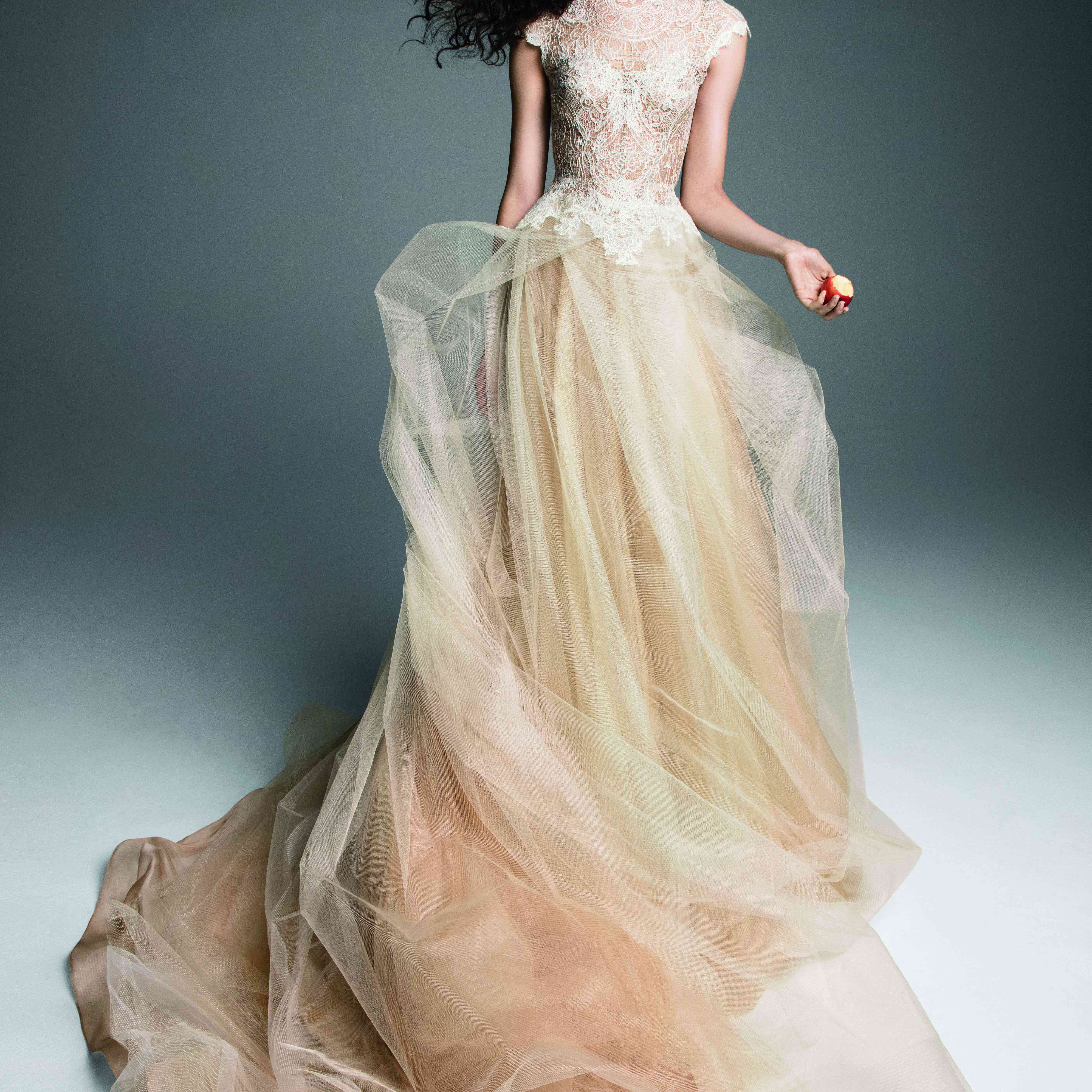 Model in nude and ivory tulle A-line gown with a lace bodice and cap sleeves