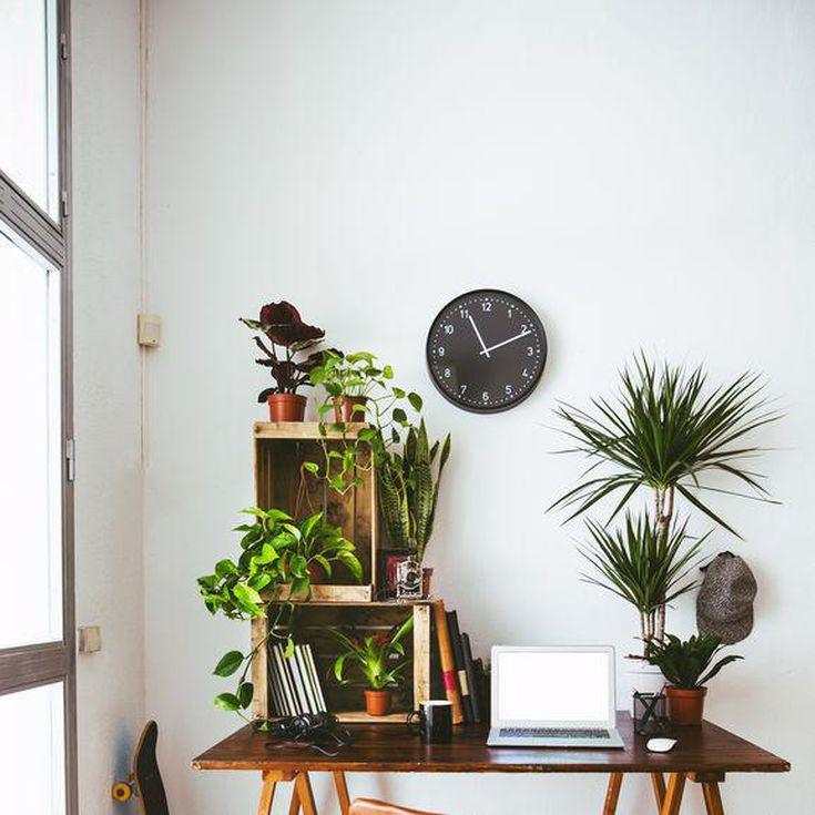 13 Eco Friendly Home Decor Picks To Help You Go Green