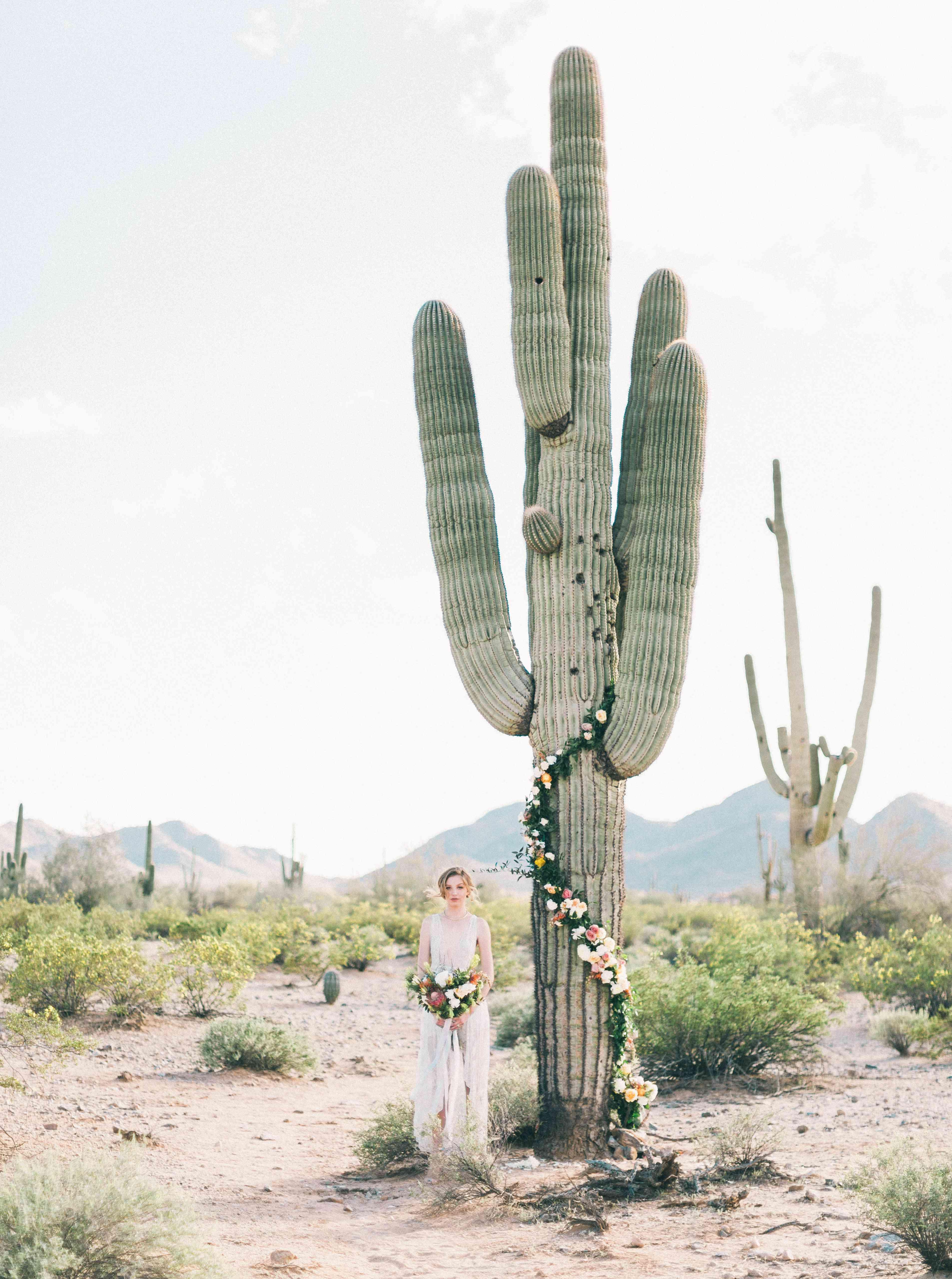 Cactus arch with bride