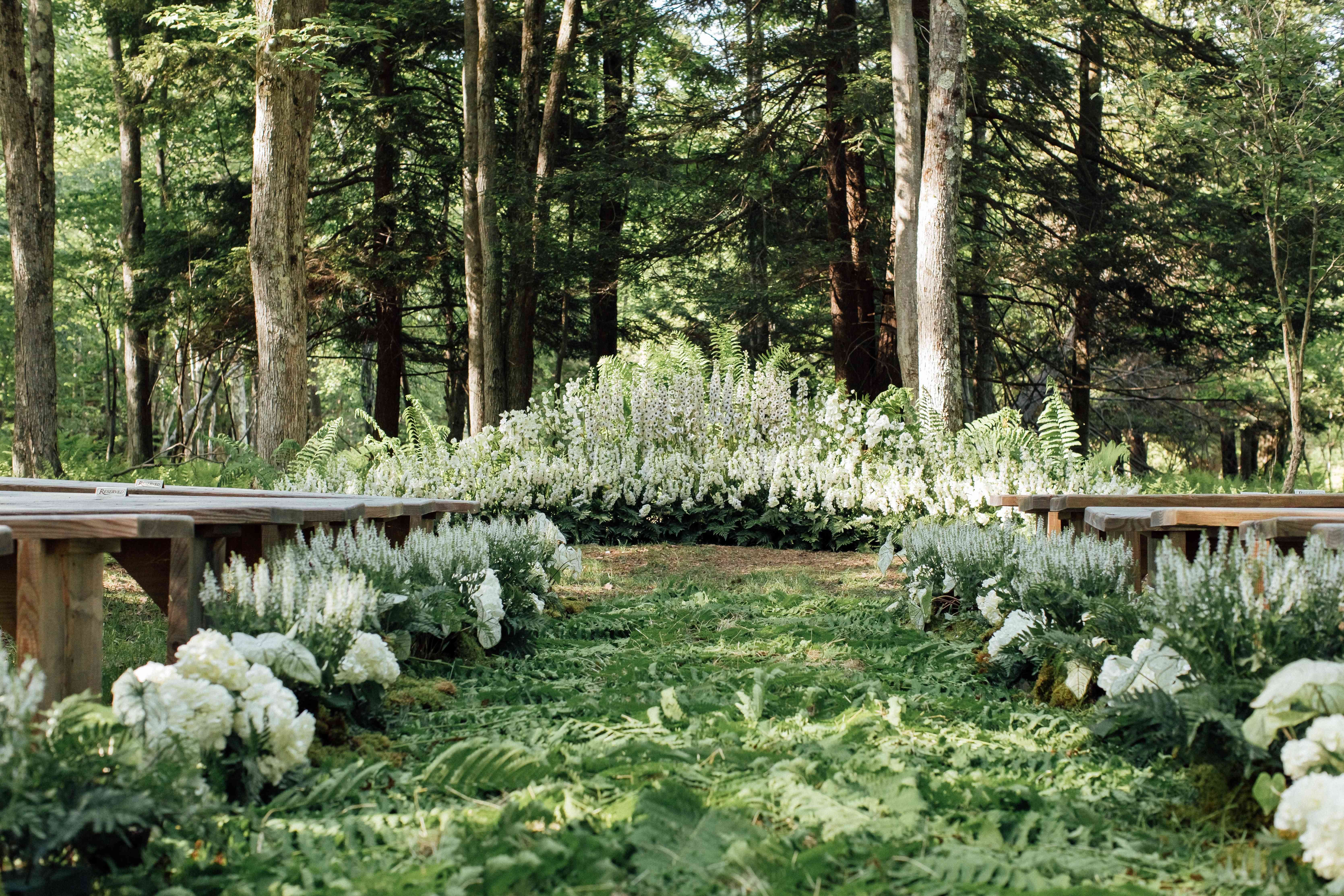 Forest ceremony venue