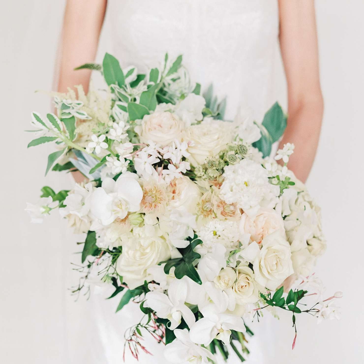 Bride holding an all-white bouquet of garden roses, orchids, flowering jasmine vine, tweedia, and various foliage