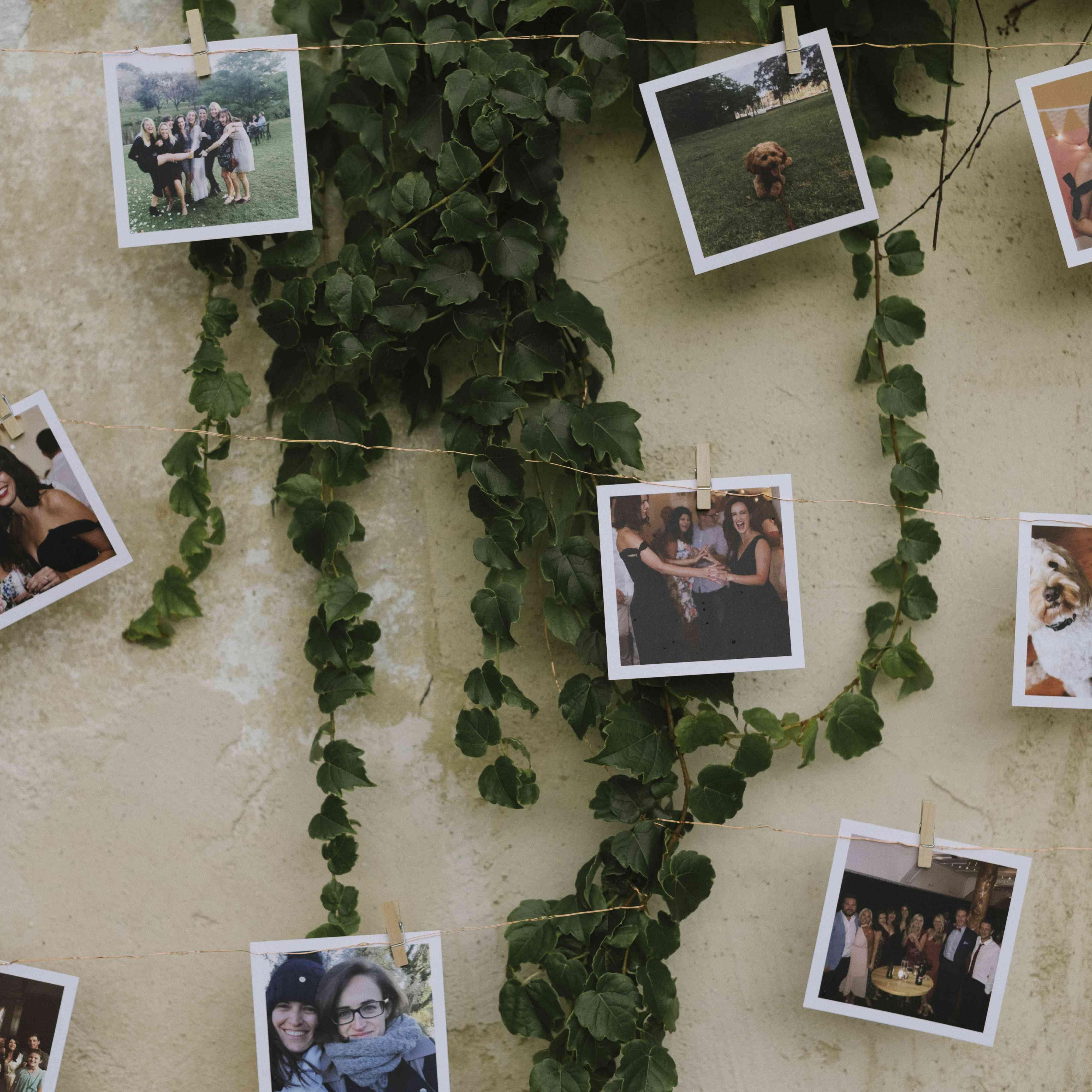 <p>wedding reception clothespin photo decoration</p><br><br>