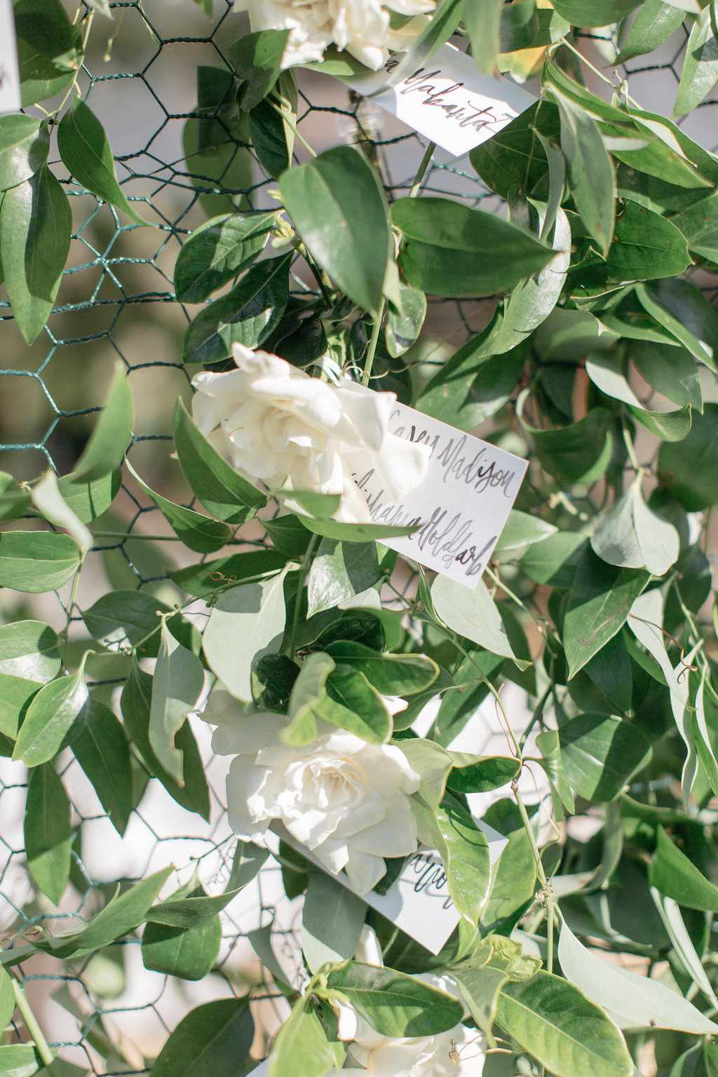 Escort cards attached to white flowers