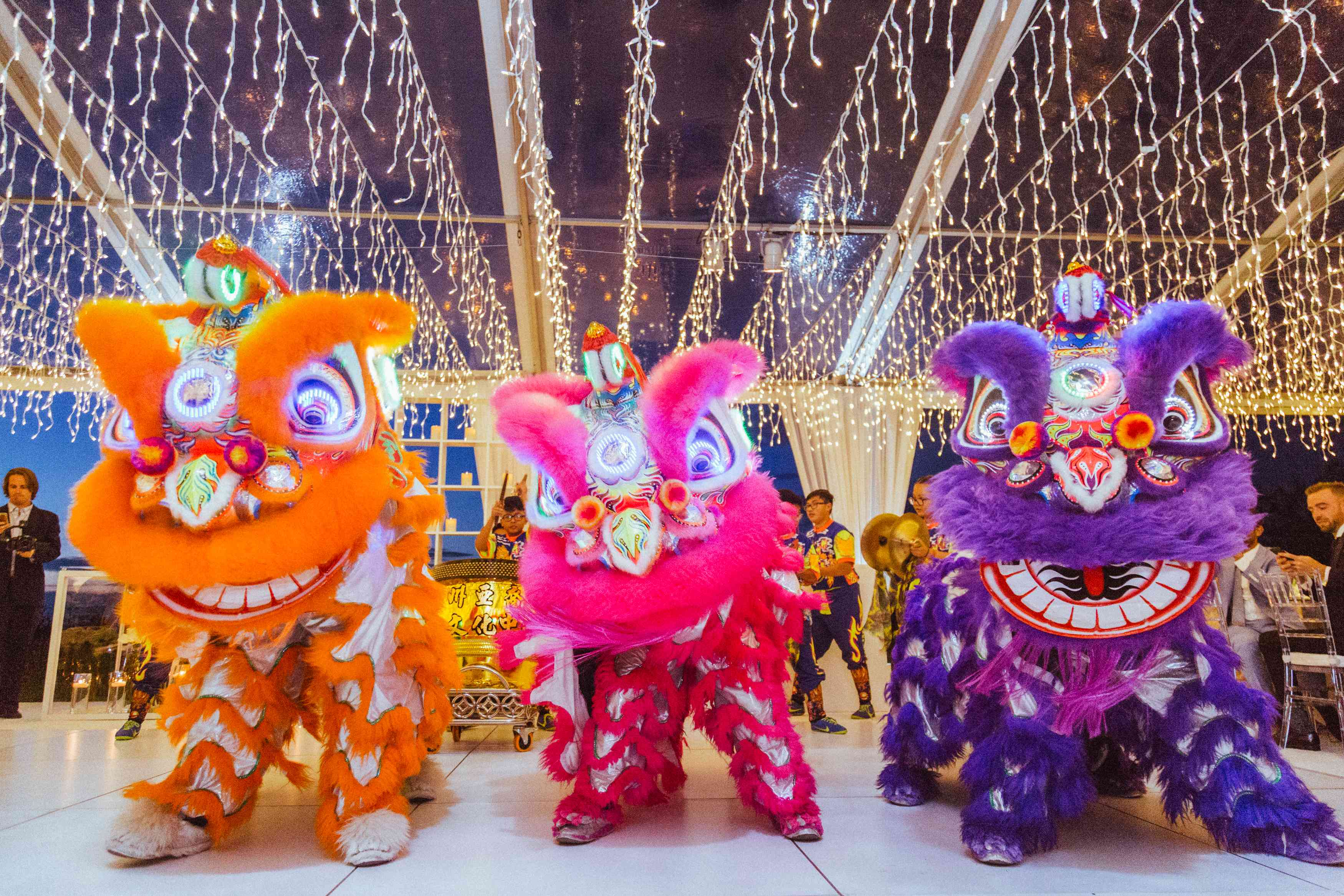 <p>Chinese dragons</p><br><br>